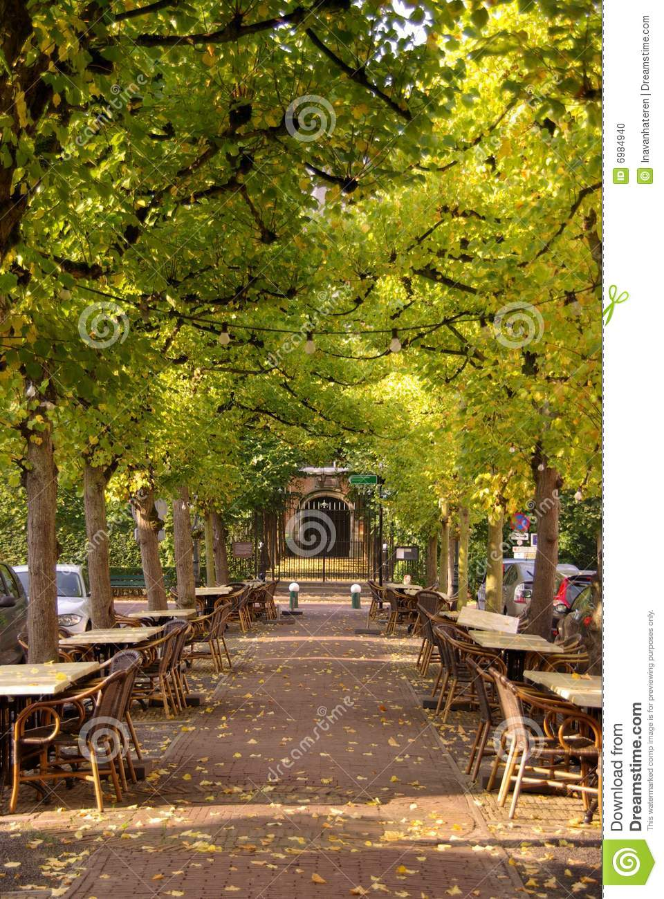 Terrace stock photo image 6984940 for Terrace trees