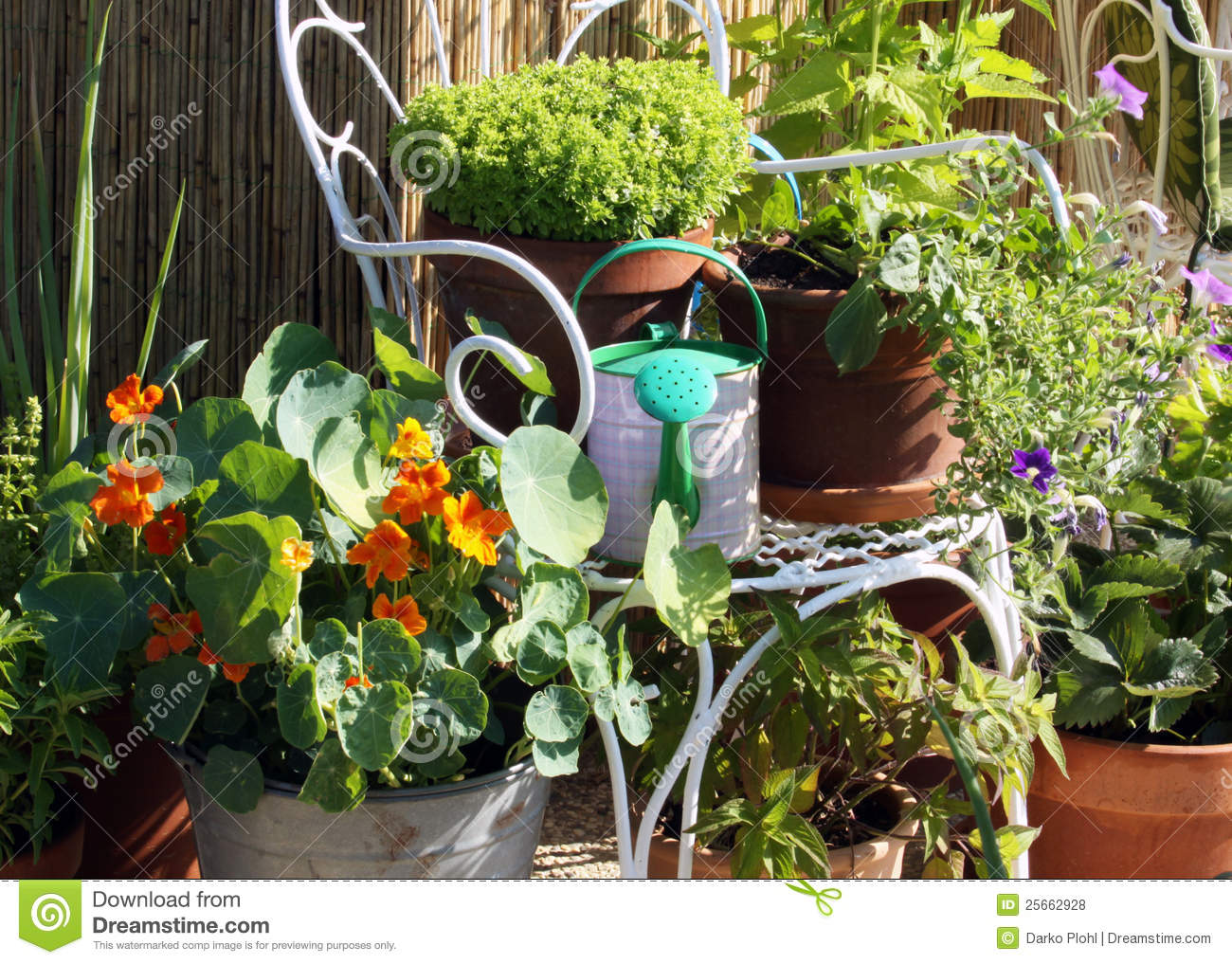 Terrace and balcony container gardening royalty free stock for Balcony herb garden designs containers