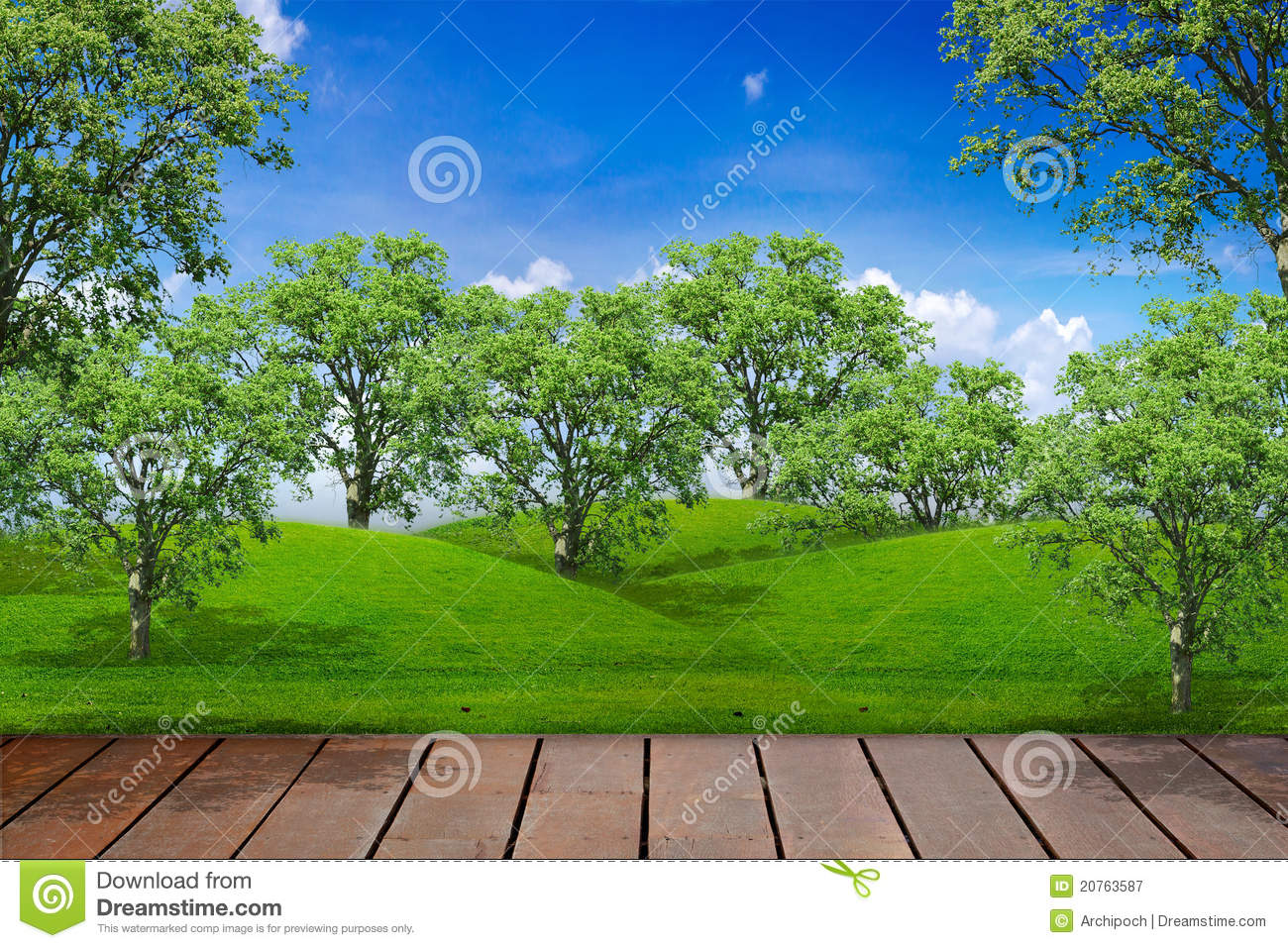 Terrace in forest royalty free stock photography image for Terrace trees