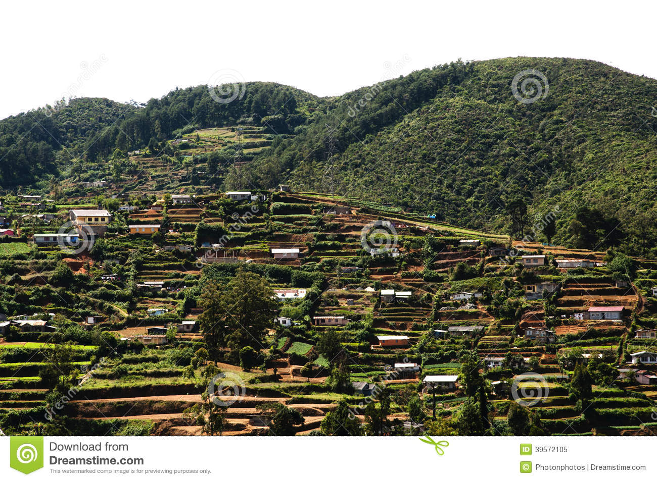 terrace village sri lanka stock photo image 39572105