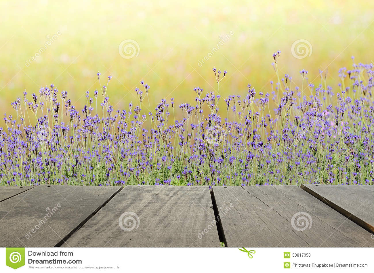 Terrace wood and beautiful meadow for nature background for Terrace nature