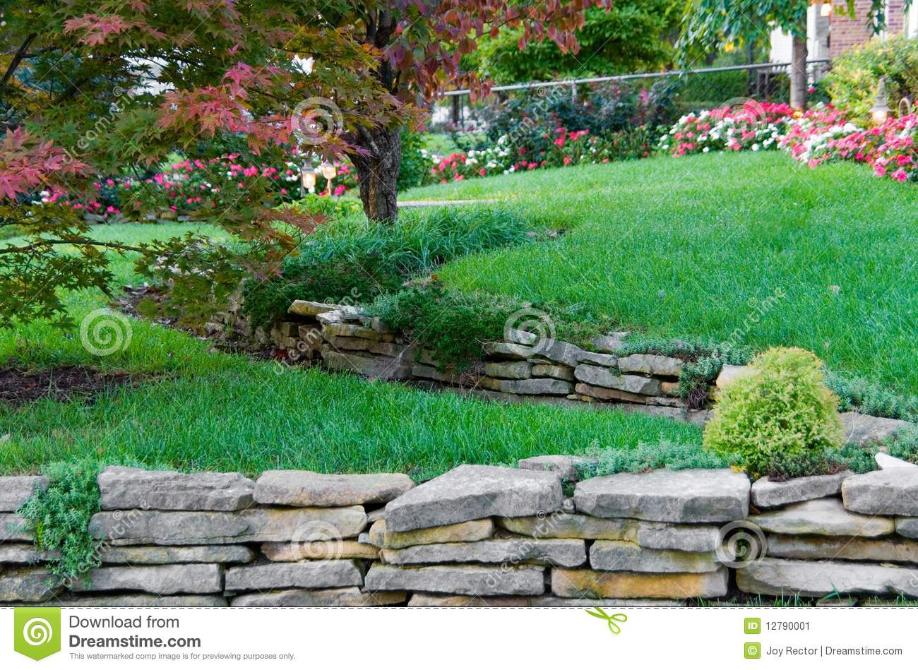 Terraced garden stock image image 12790001 - How to terrace a hillside ...