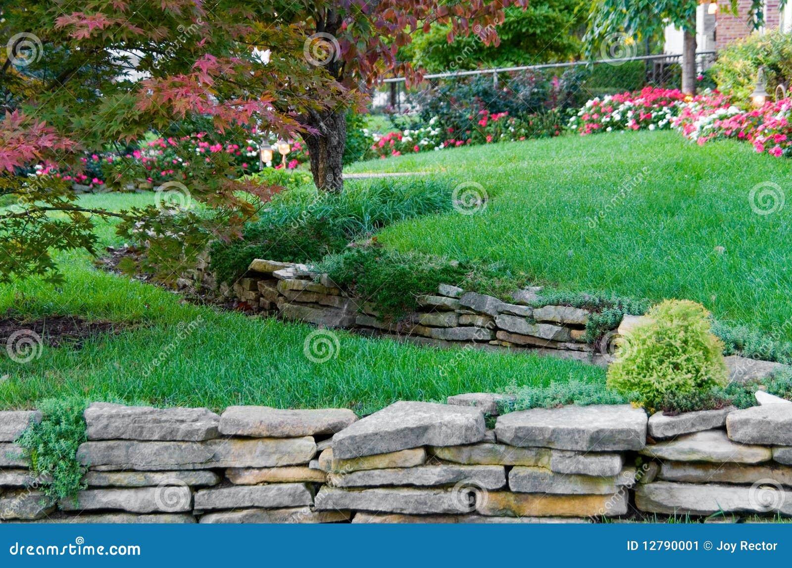Terraced garden stock image image of shrub paradise for Jardin en terrasse