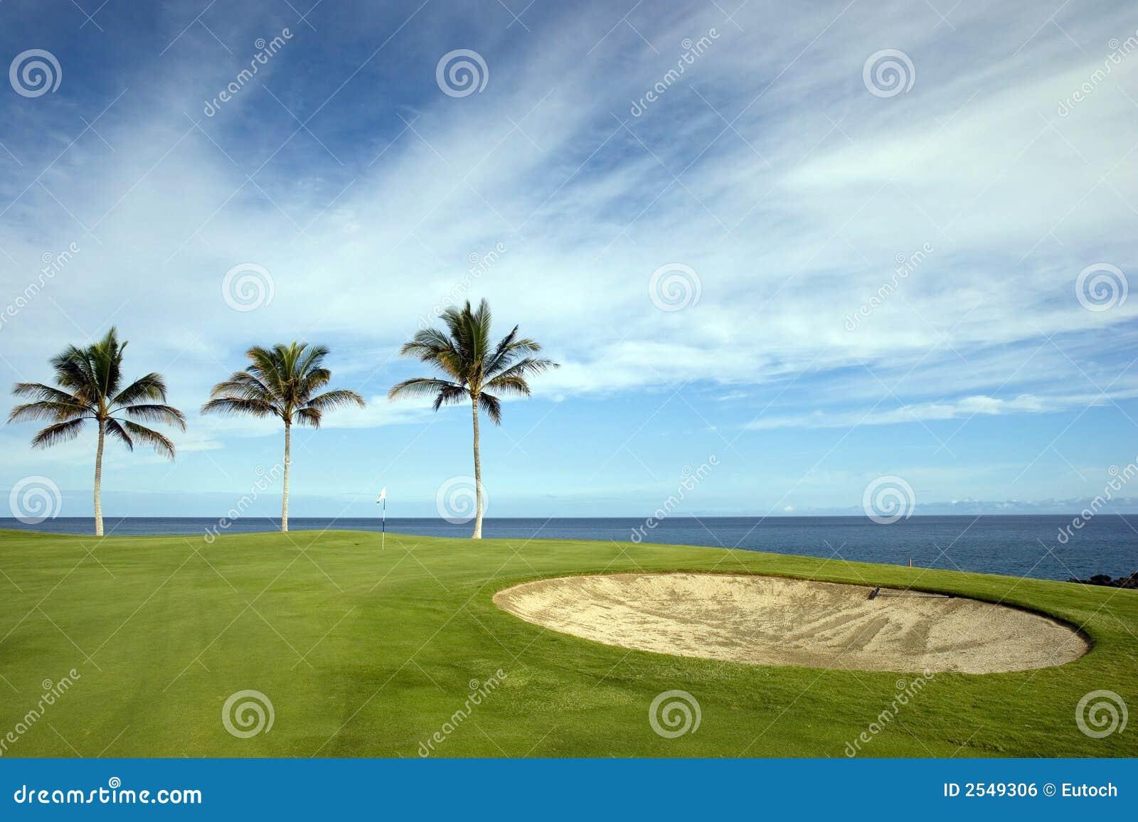 Terrain de golf d Hawaï