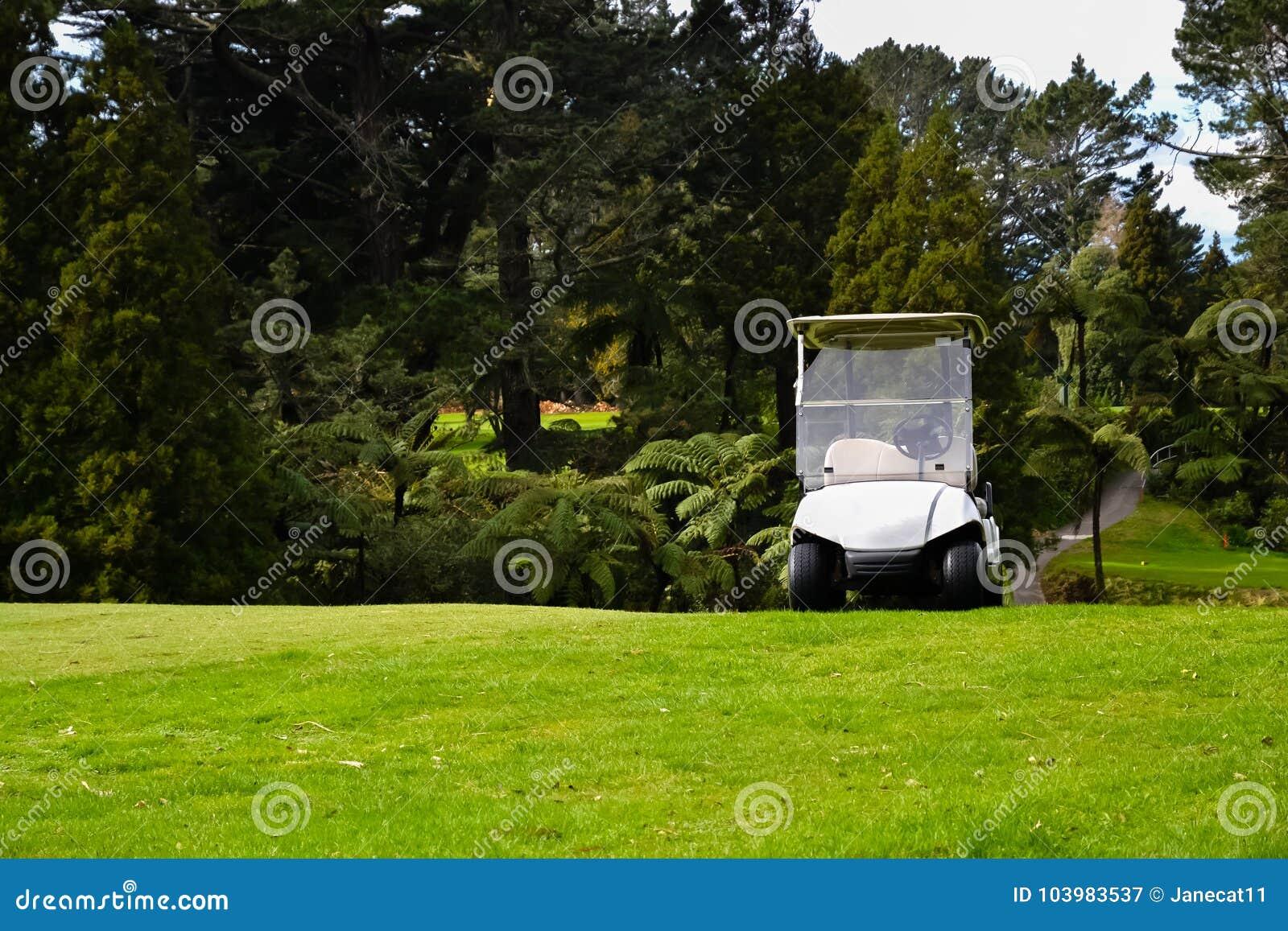 Terrain de golf du Nouvelle-Zélande avec le kart de golf