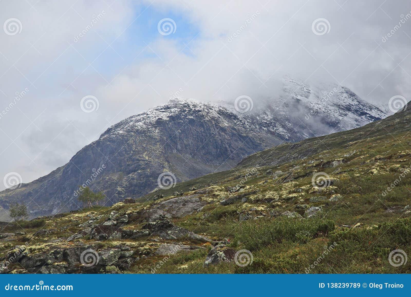 Terrain montagneux en Norvège Stationnement national de Jotunheimen