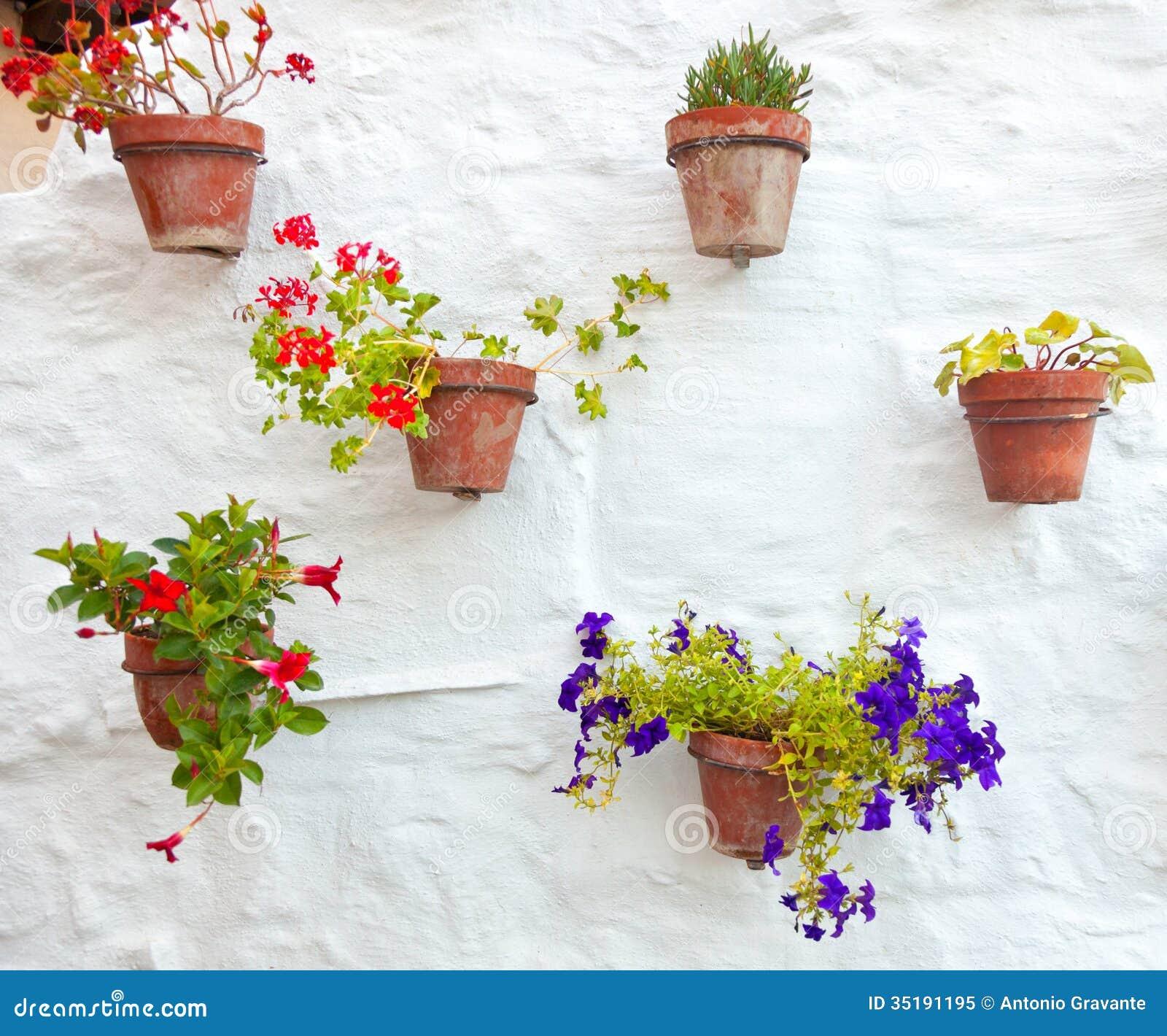 Terrakottavasen Mit Den Bunten Blumen Die An Der Weißen