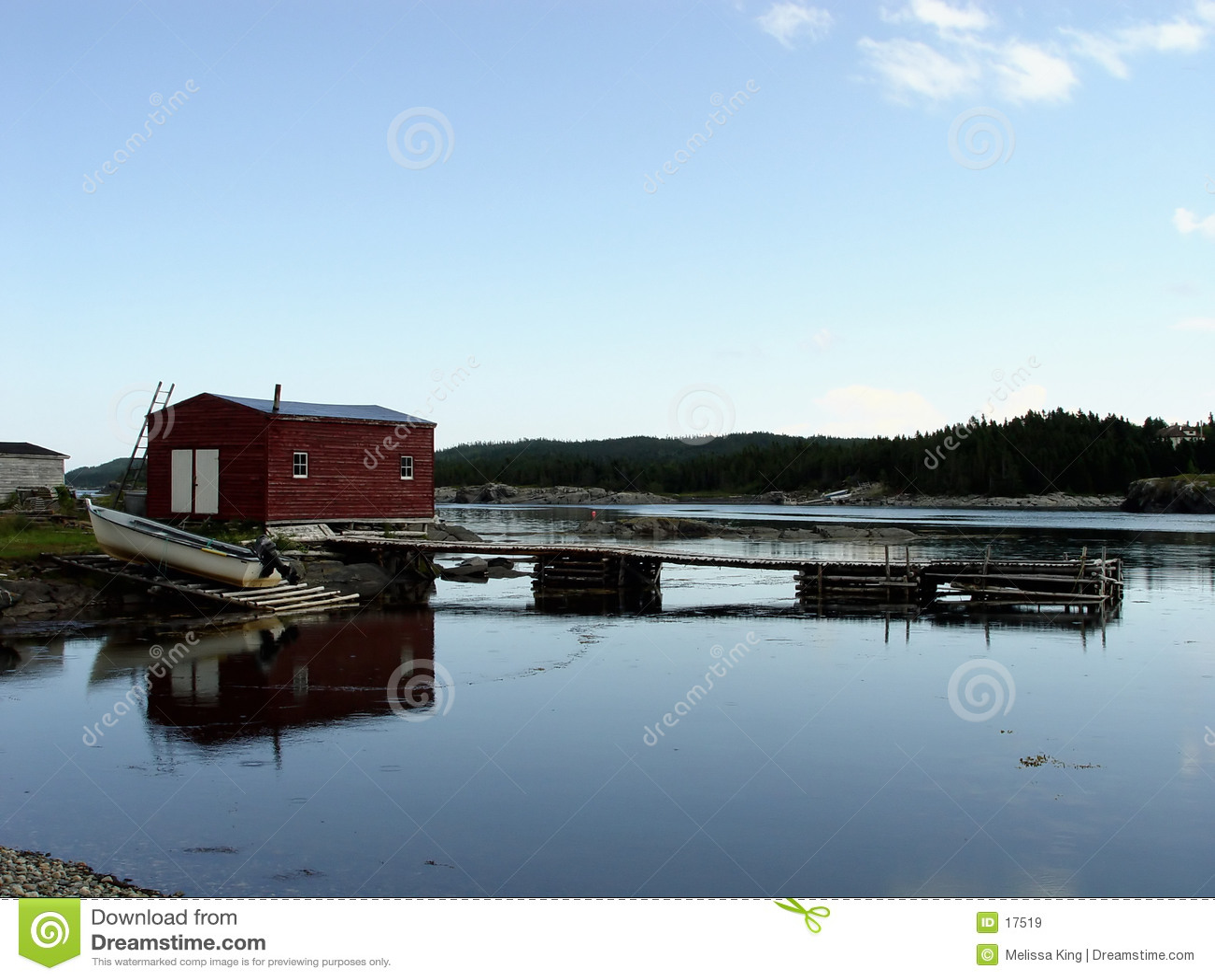 Terranova rurale