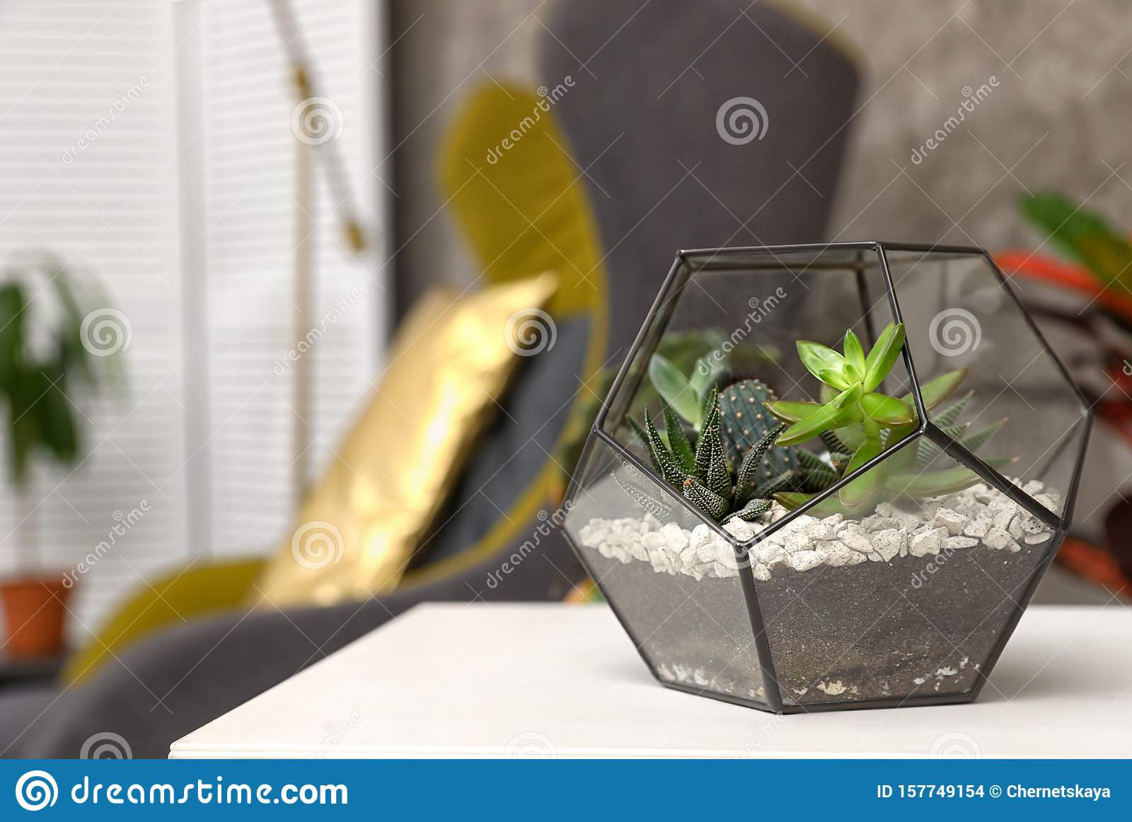 Terrarium With Succulents On Table In Room Trendy Plants Stock Photo Image Of Decor Floral 157749154