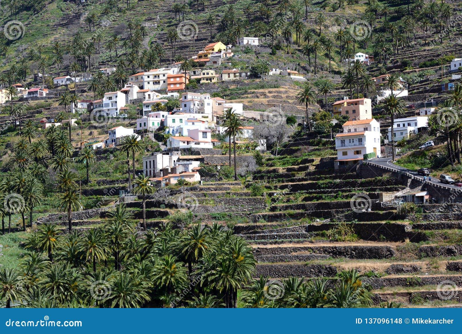Terrassen in Valle Gran Rey