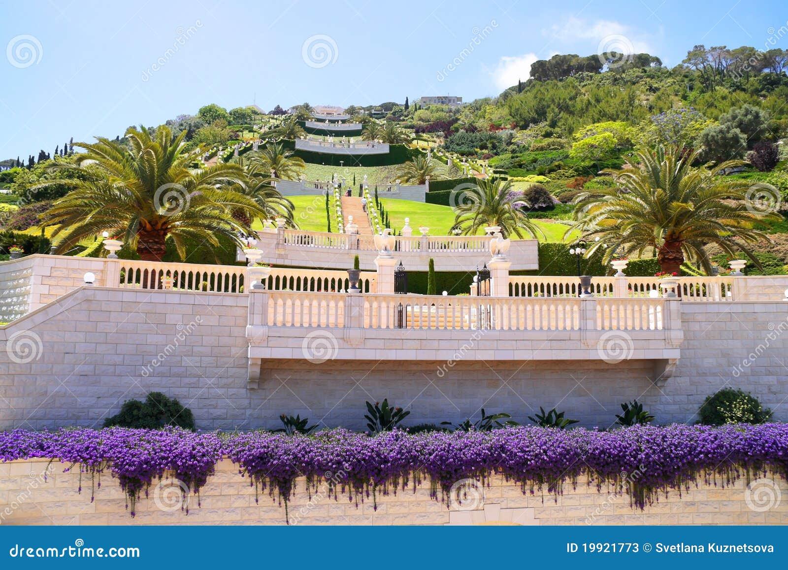 Terrassen van de tuinen bahai isra l stock foto 39 s afbeelding 19921773 - Afbeeldingen van terrassen verwachten ...