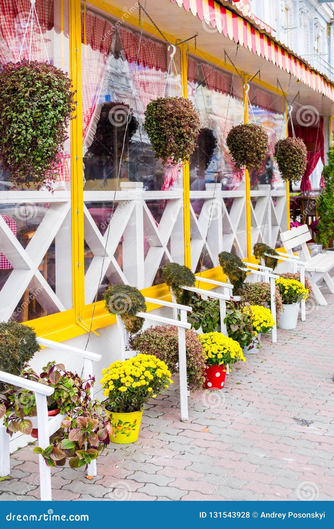 Terraza De Los Arbustos De Las Macetas De Las Flores Foto De