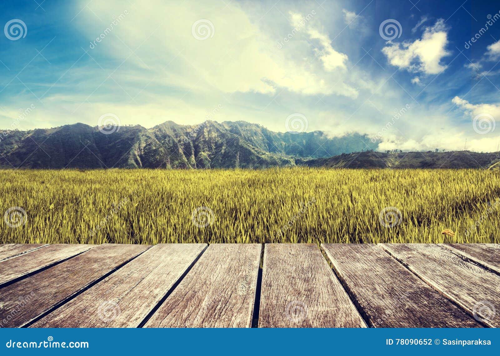 Tono Terraza : Terraza de madera con el campo verde y el cielo azul tono del arroz