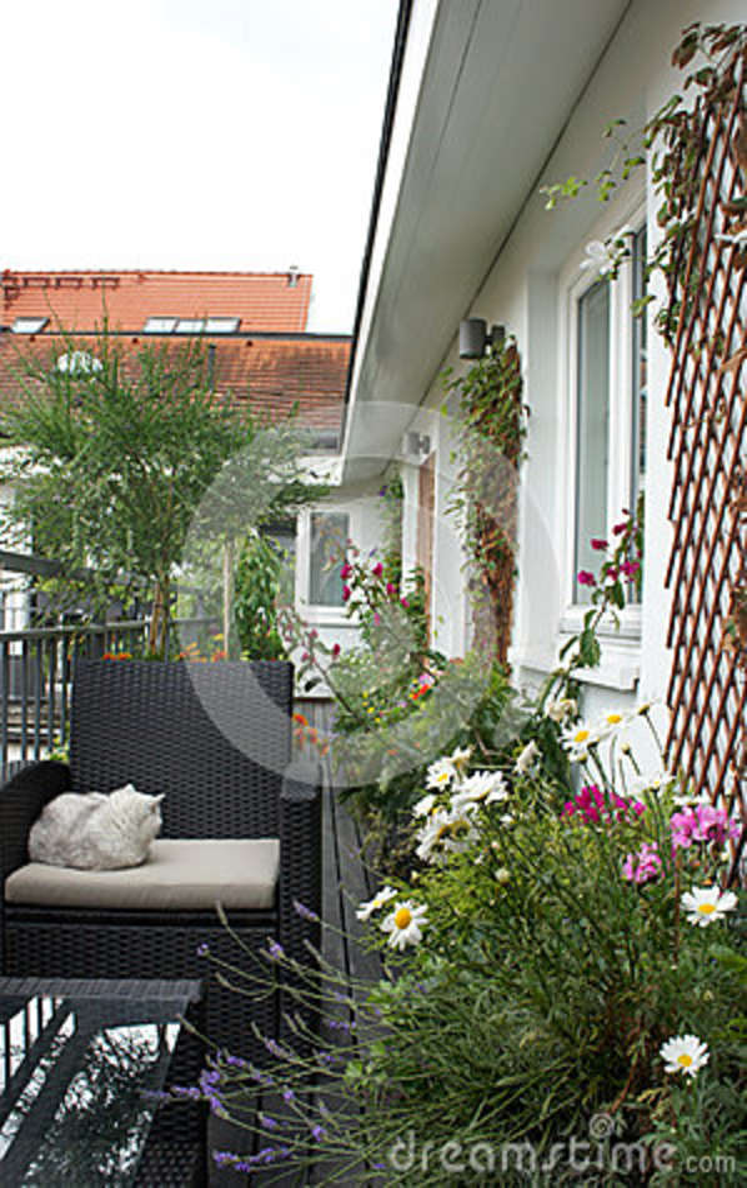Terraza Hermosa De La Casa Con Muchas Flores Foto De Archivo