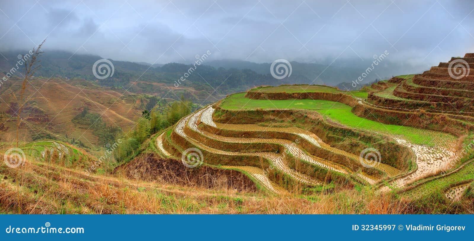 Terrazas Del Arroz Dazhai Cerca De Longsheng Guangxi