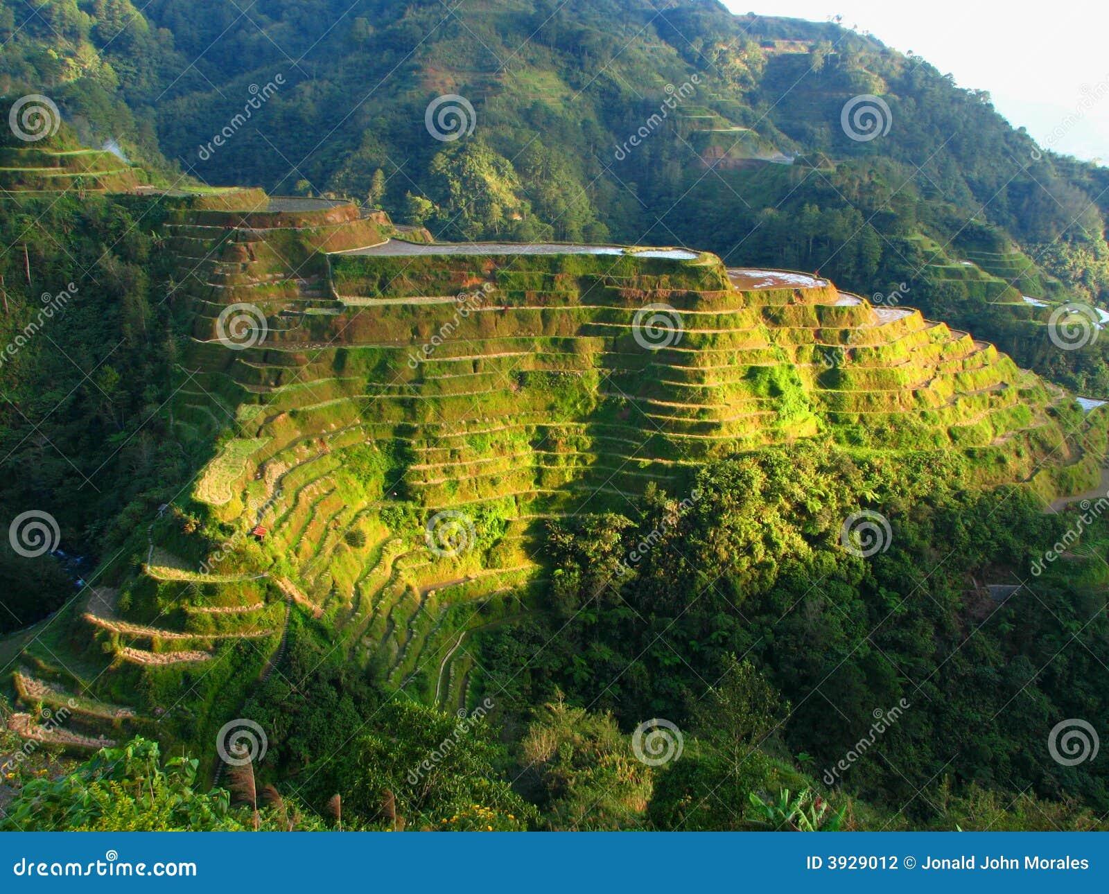 Terrazzi del riso di Banaue