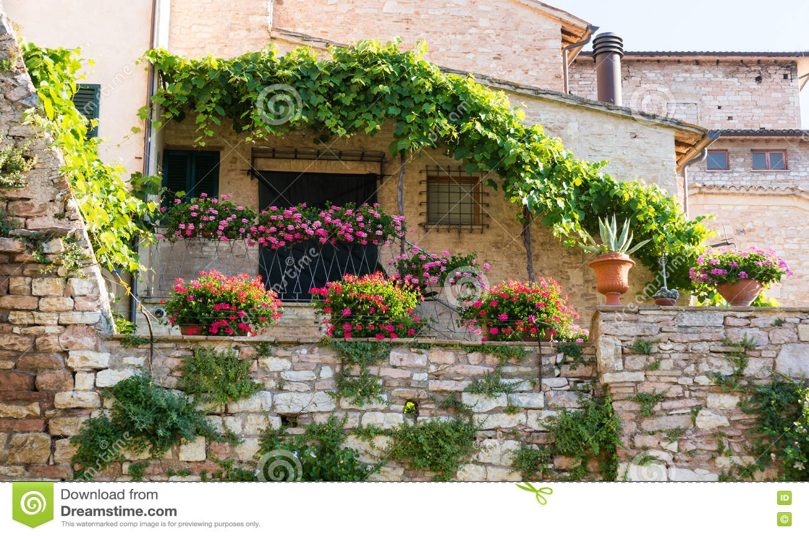 Come arredare il balcone con i fiori non sprecare