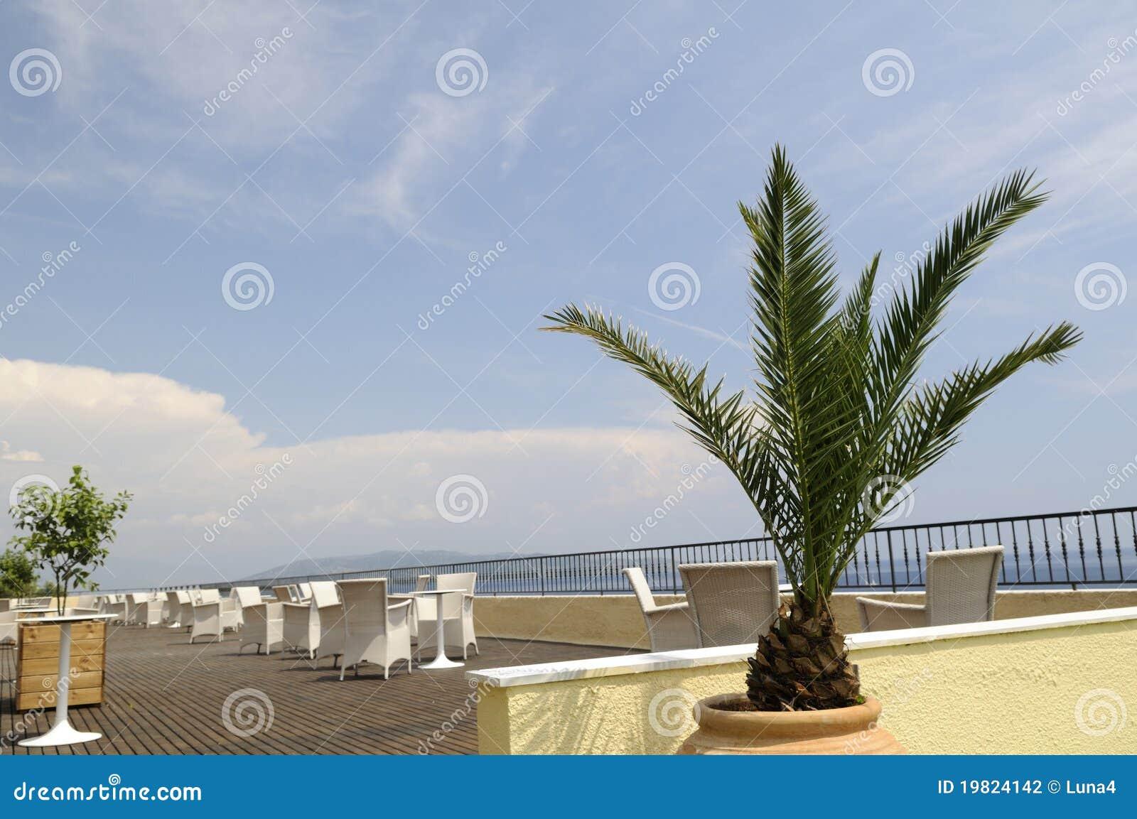 Terrazzo con la palma fotografia stock. Immagine di ricorso - 19824142