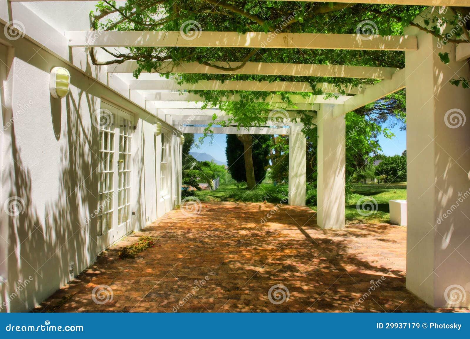 Terrazzo coperto dall 39 uva e dall 39 edera immagine stock for Disegni per la casa del merluzzo cape