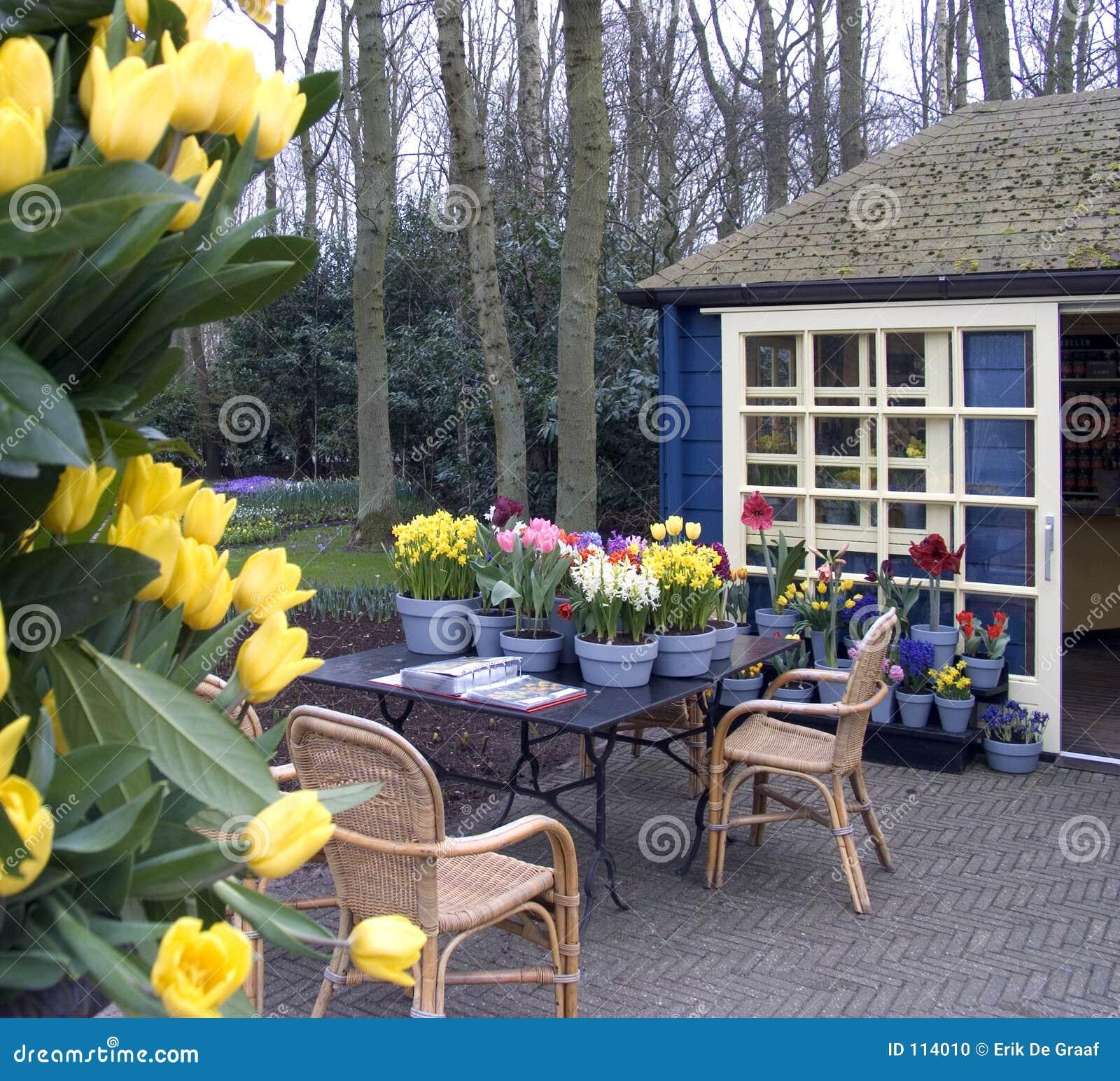 Terrazzo del fiore fotografia stock. Immagine di negozio - 114010