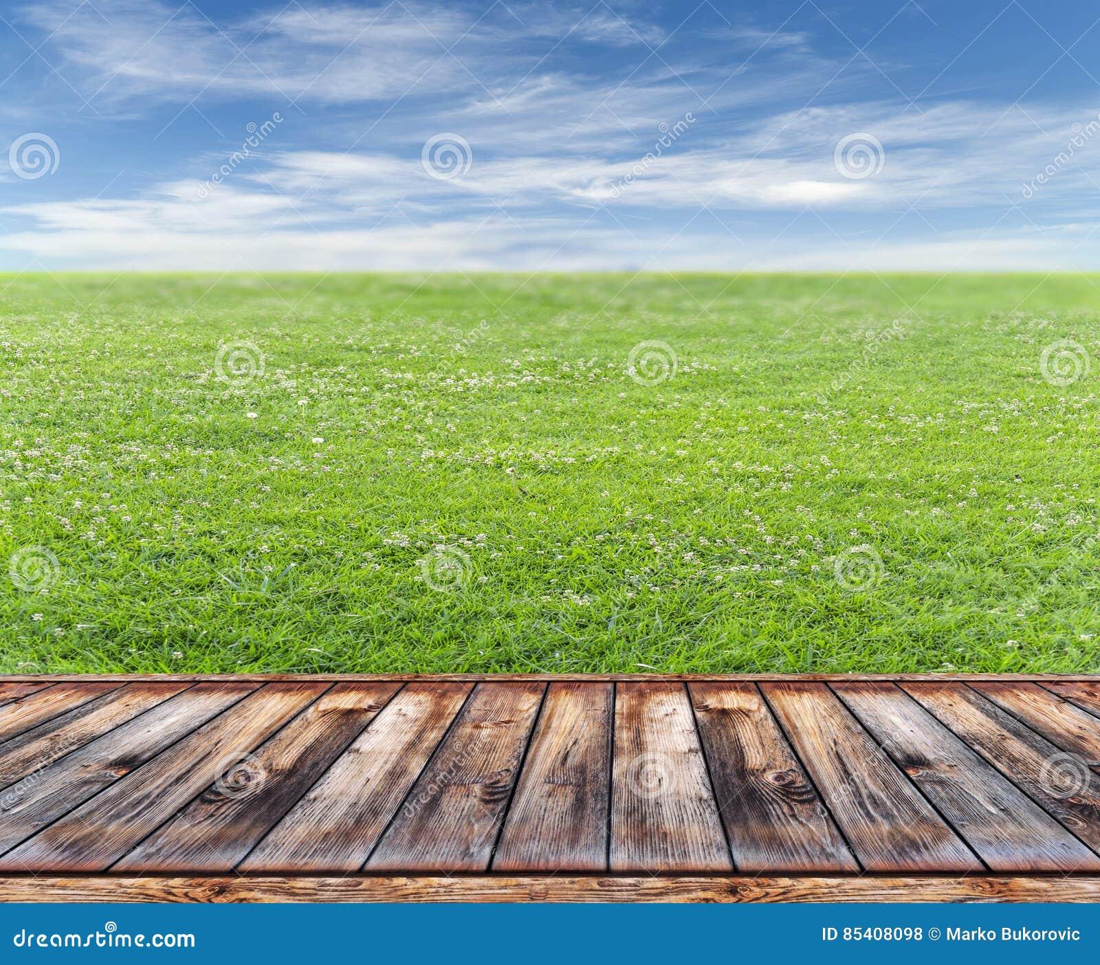 Terrazzo Di Legno Con Prato Inglese Fotografia Stock - Immagine di ...