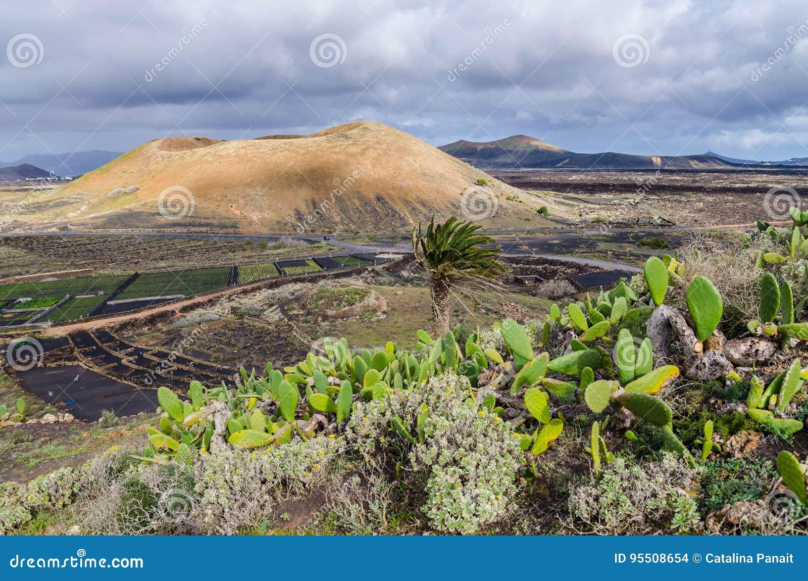 Terre des volcans