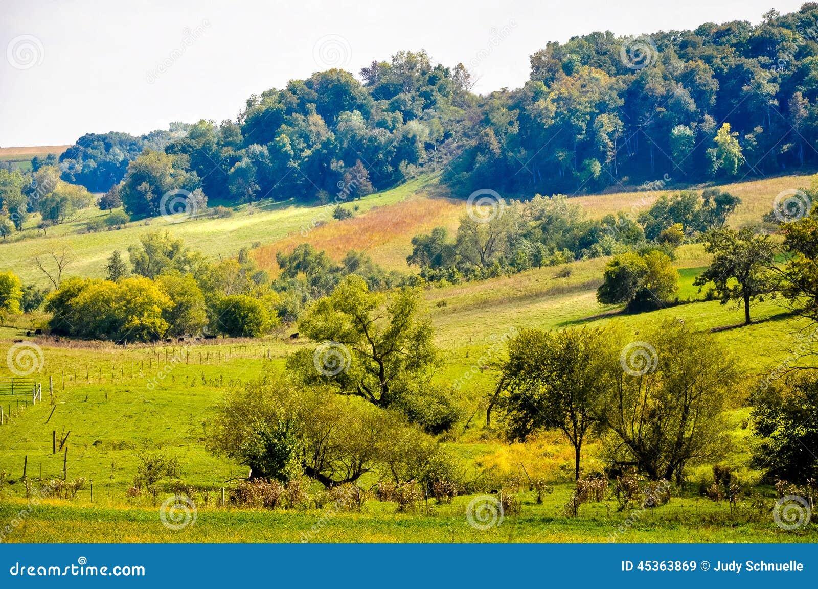 Terre magnifique de ferme