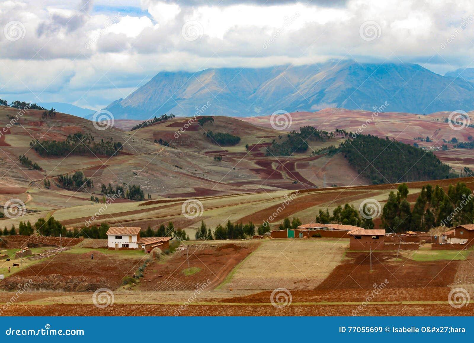 Terreno coltivabile nella valle sacra peruviana