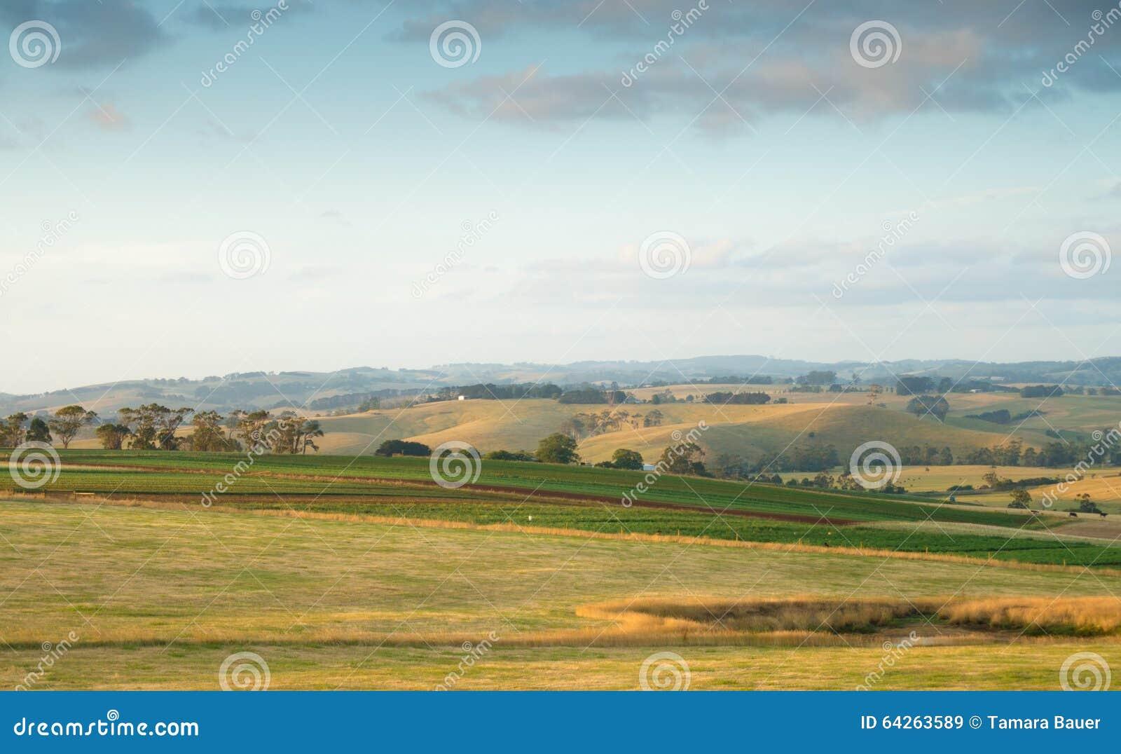 Terreno coltivabile rurale dell Australia