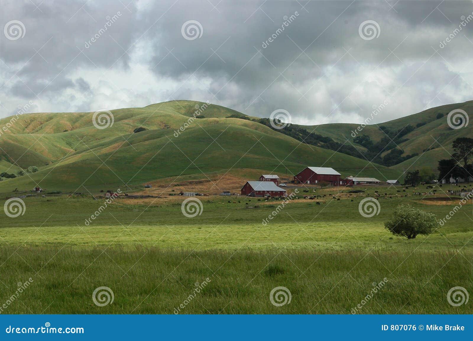 Terreno coltivabile S.U.A.