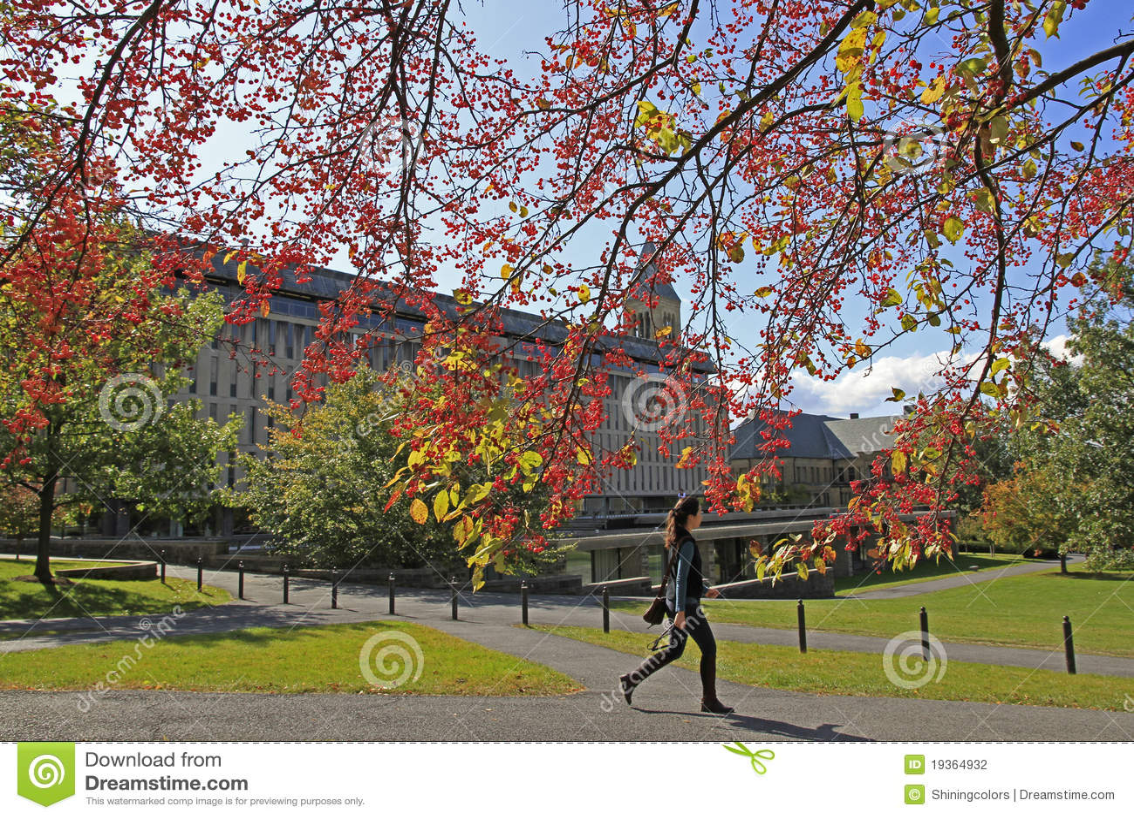 Terreno da Universidade de Cornell em Ithaca