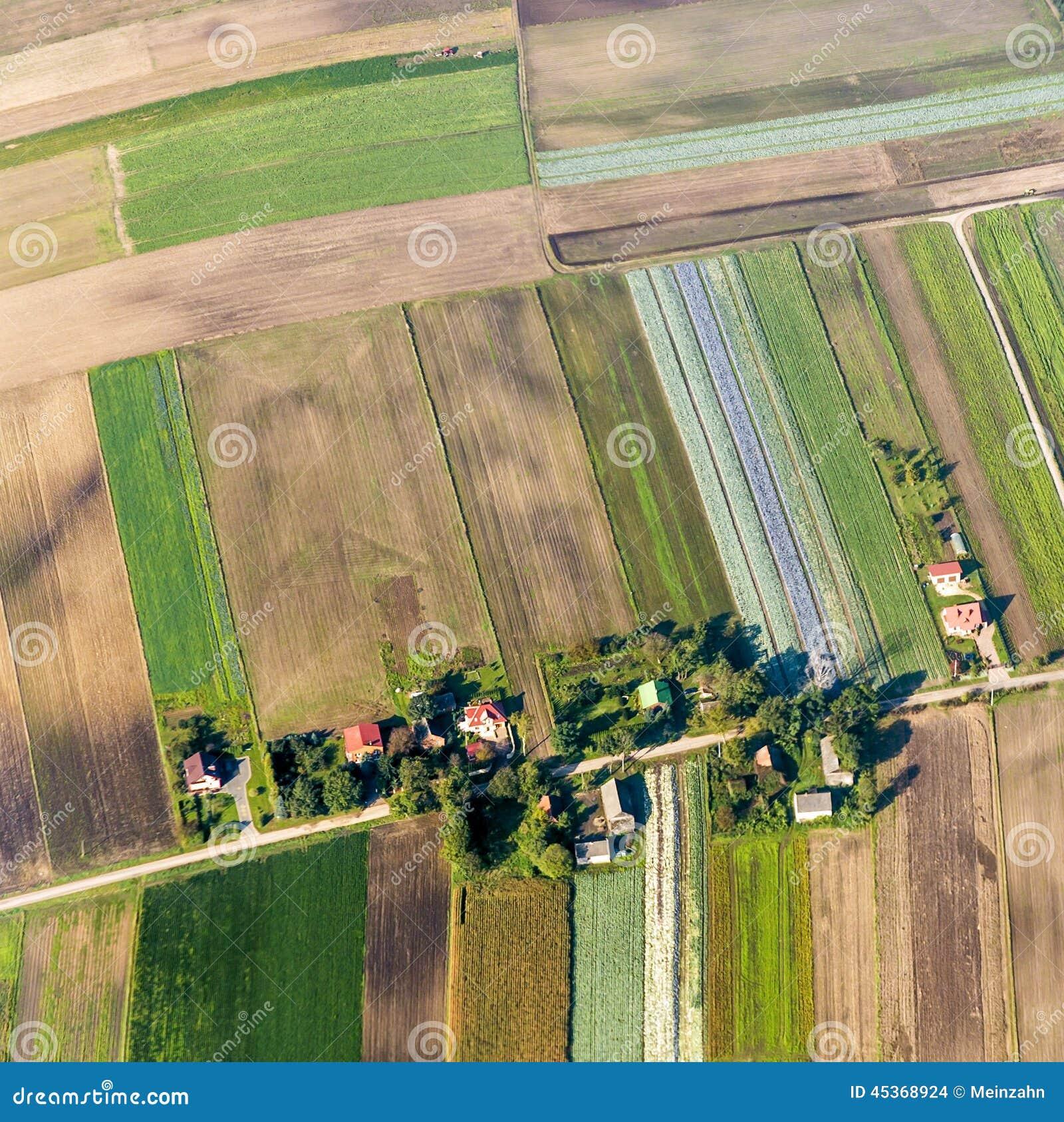 Terres cultivables polonaises près de Cracovie