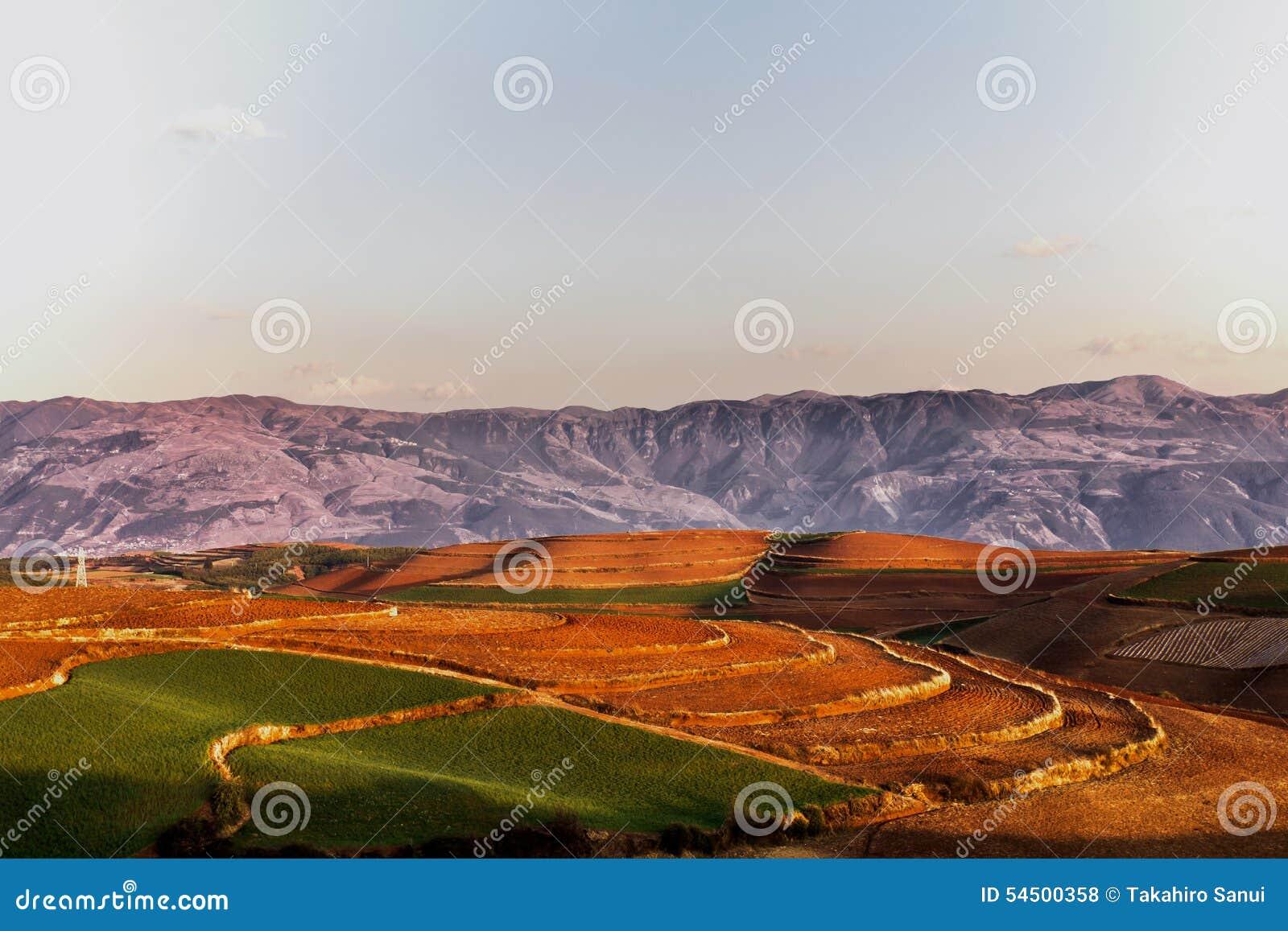 Terres cultivables rouges de la terre dans Dongchuan, Chine