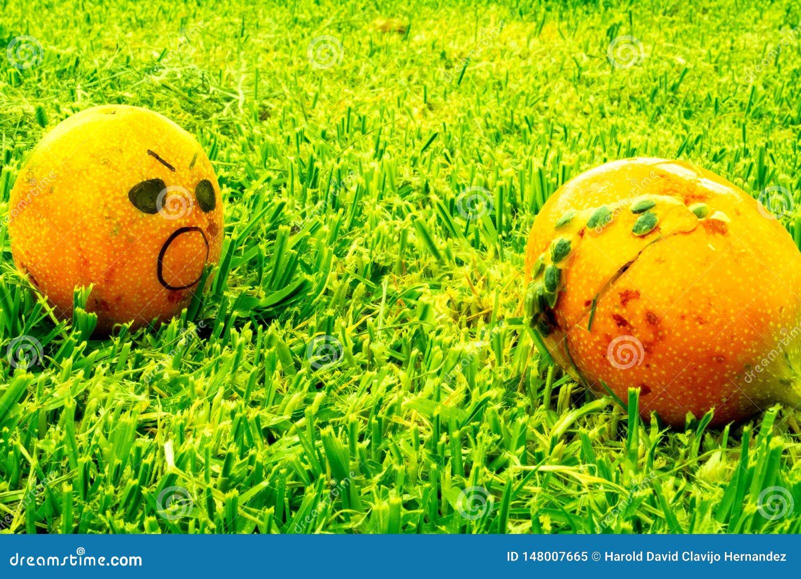Terreur de fruit nourriture gaspillée