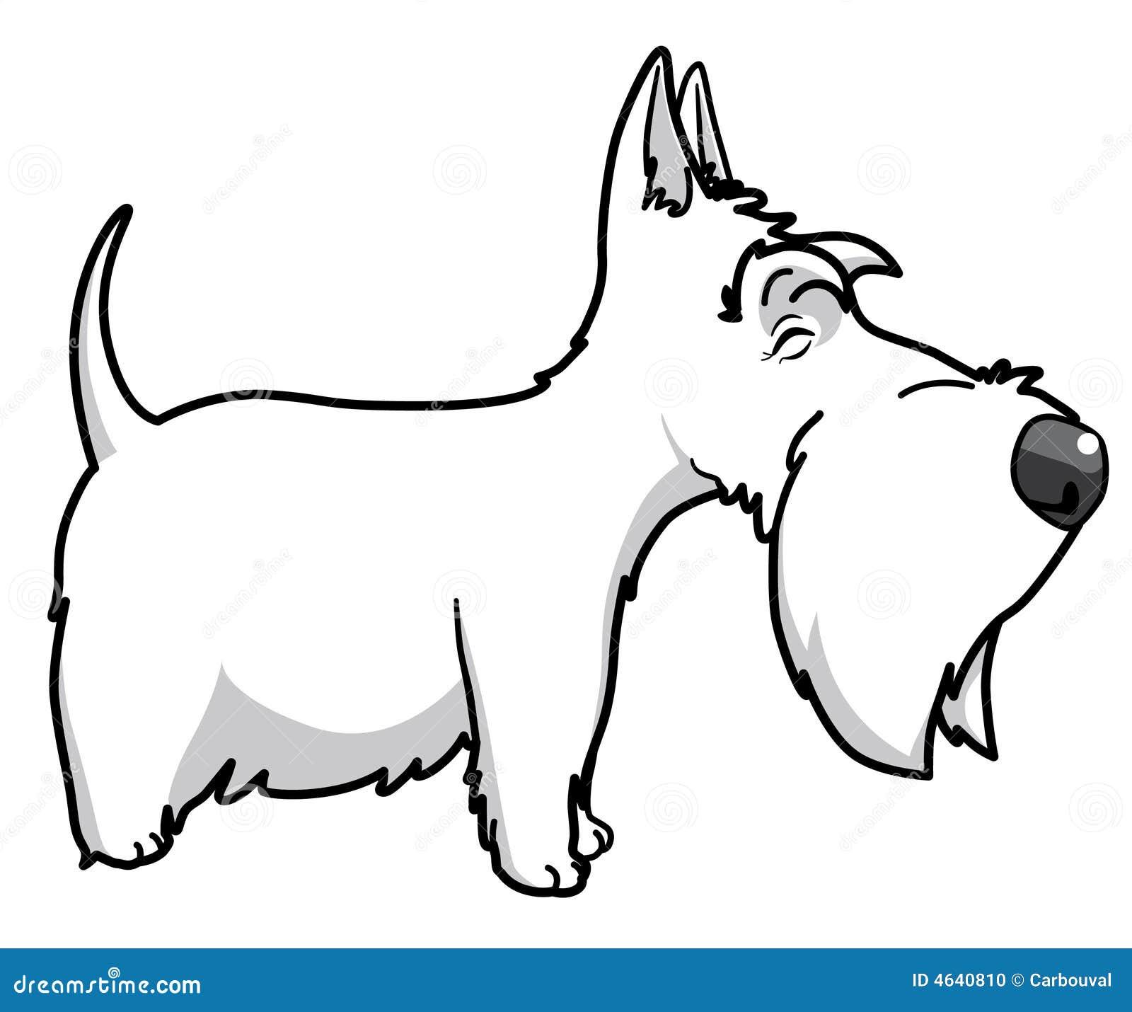 Terrier de Scottisth