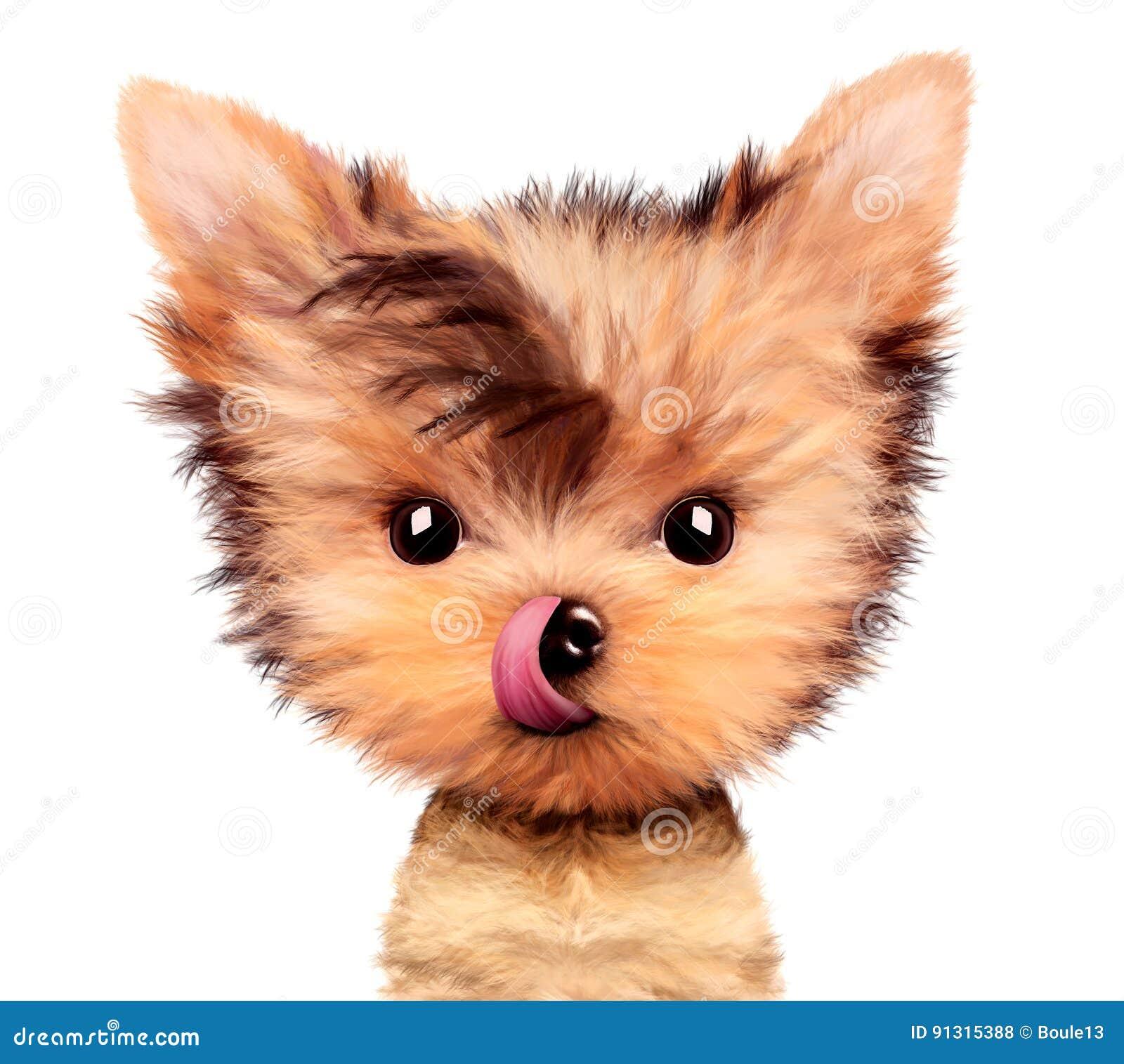 ea4af8ddcf Terrier De Yorkshire Adorable Se Reposant Léchant Le Nez Photo stock ...