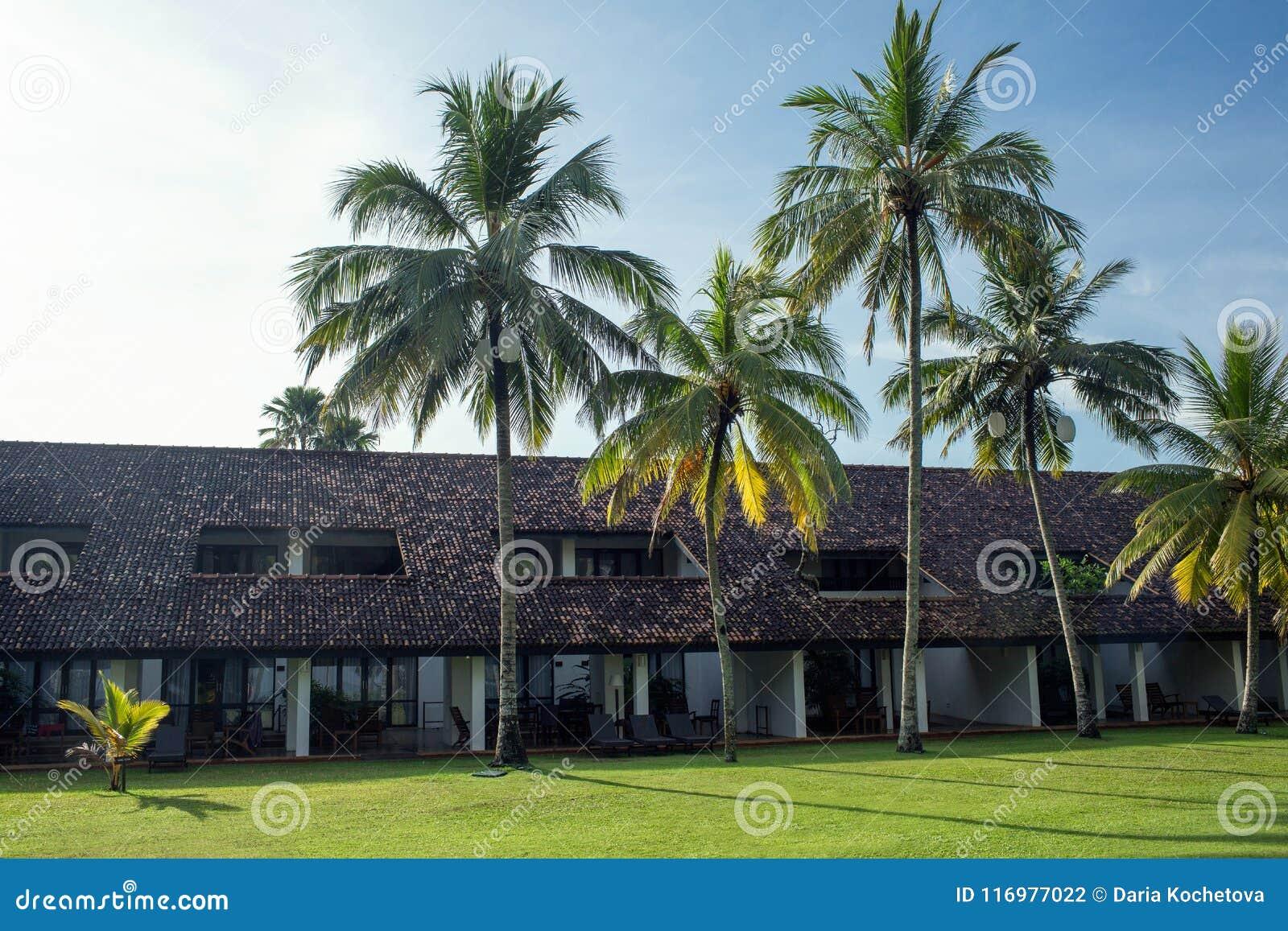 Territorio del centro turístico y del balneario de Avani Bentona del hotel