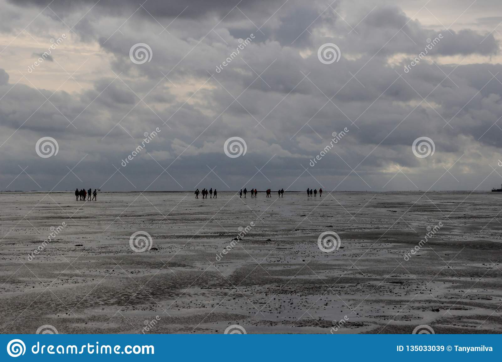 A group of tourists walks on the seabed at low tide from Holland to the island in bad weather and rain