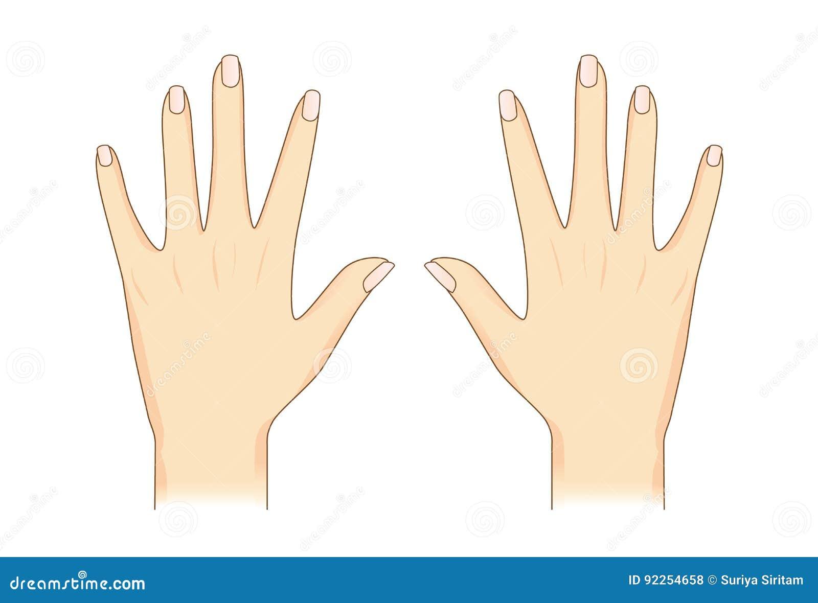 Terug van menselijke hand
