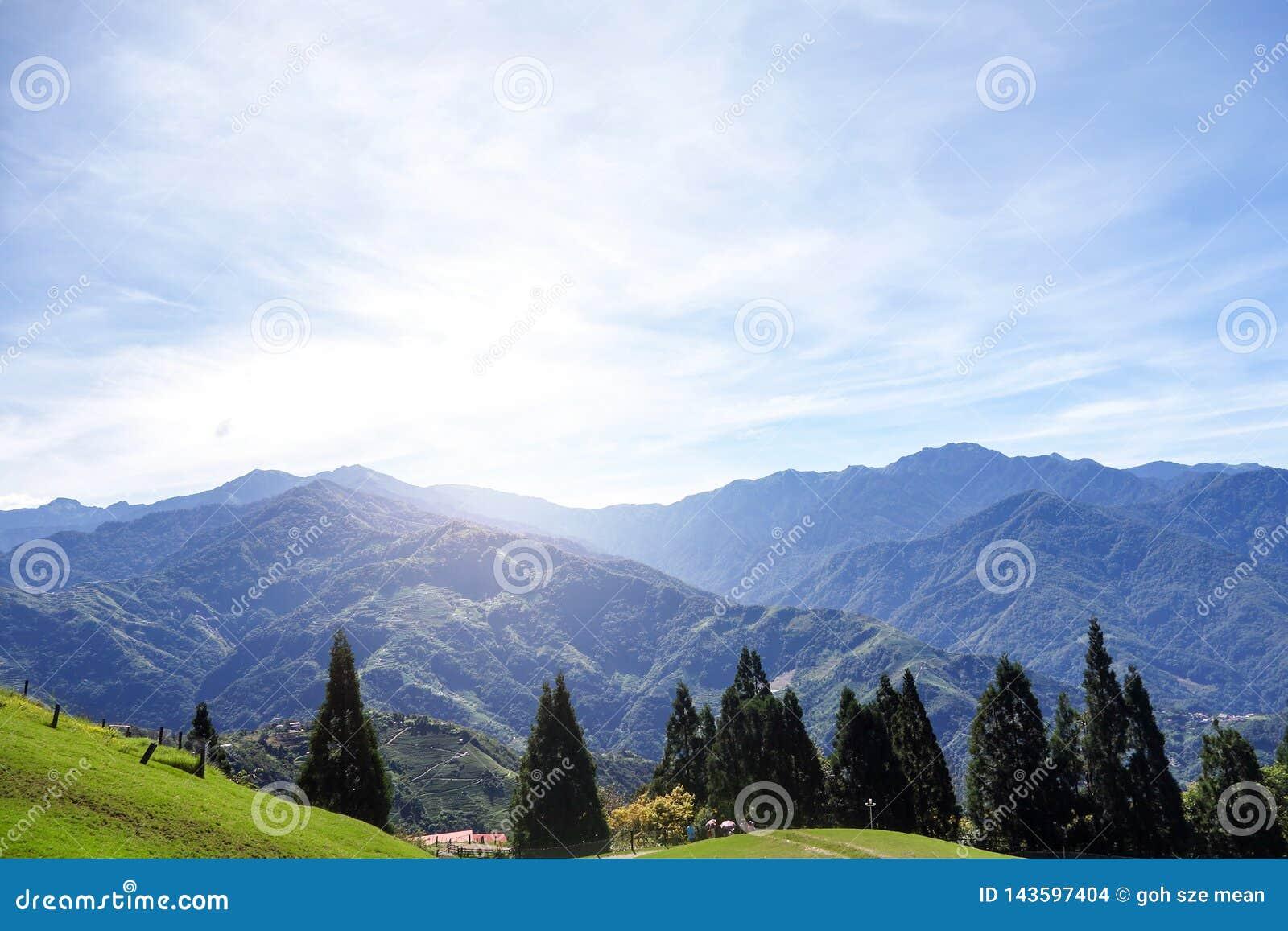 Tesouro do verde da montanha de Taiwan