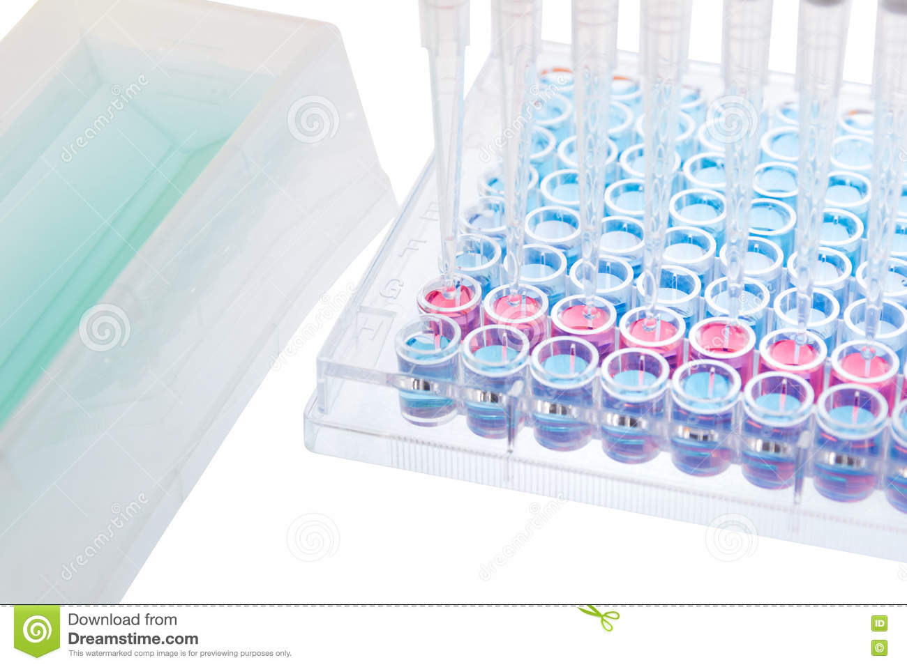 Test Sample Research Test Lab Elisa Stock Photo - Image: 73183925