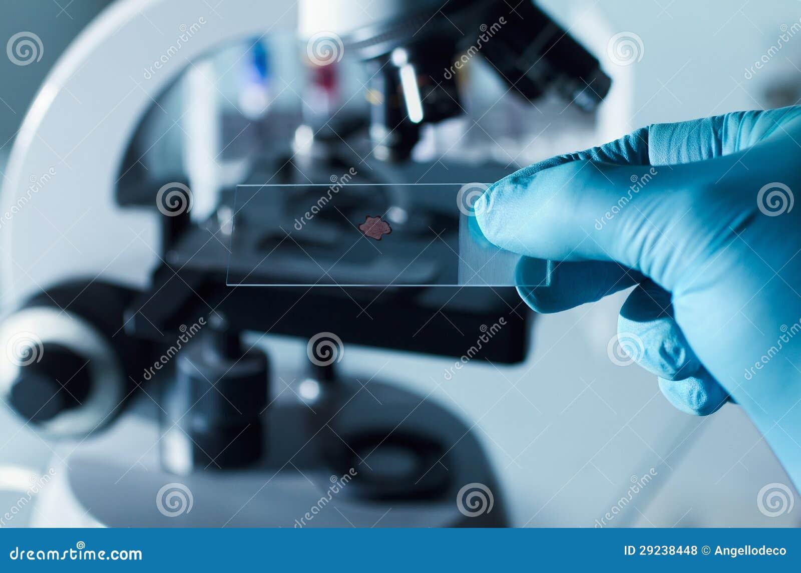 Test tar prov för mikroskop