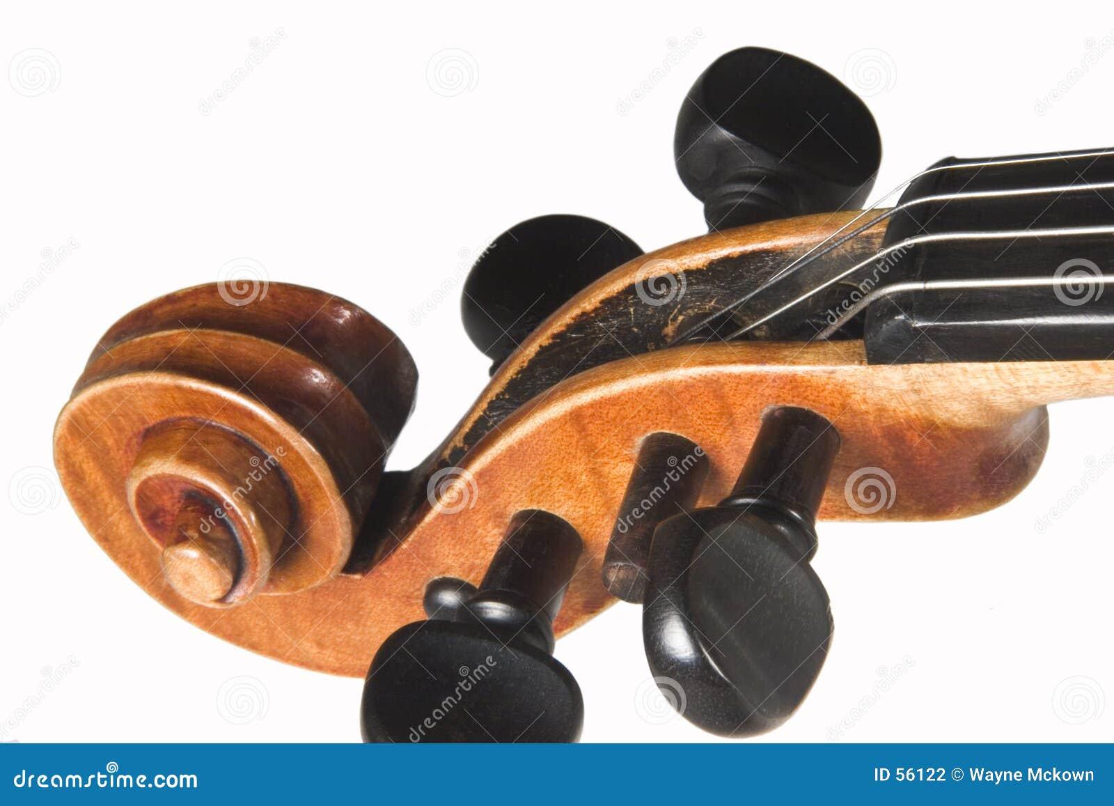Testa motrice del violino
