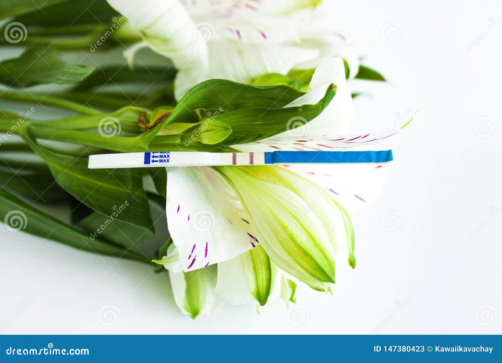 Teste de gravidez positivo com um ramalhete das flores brancas do alstroemeria