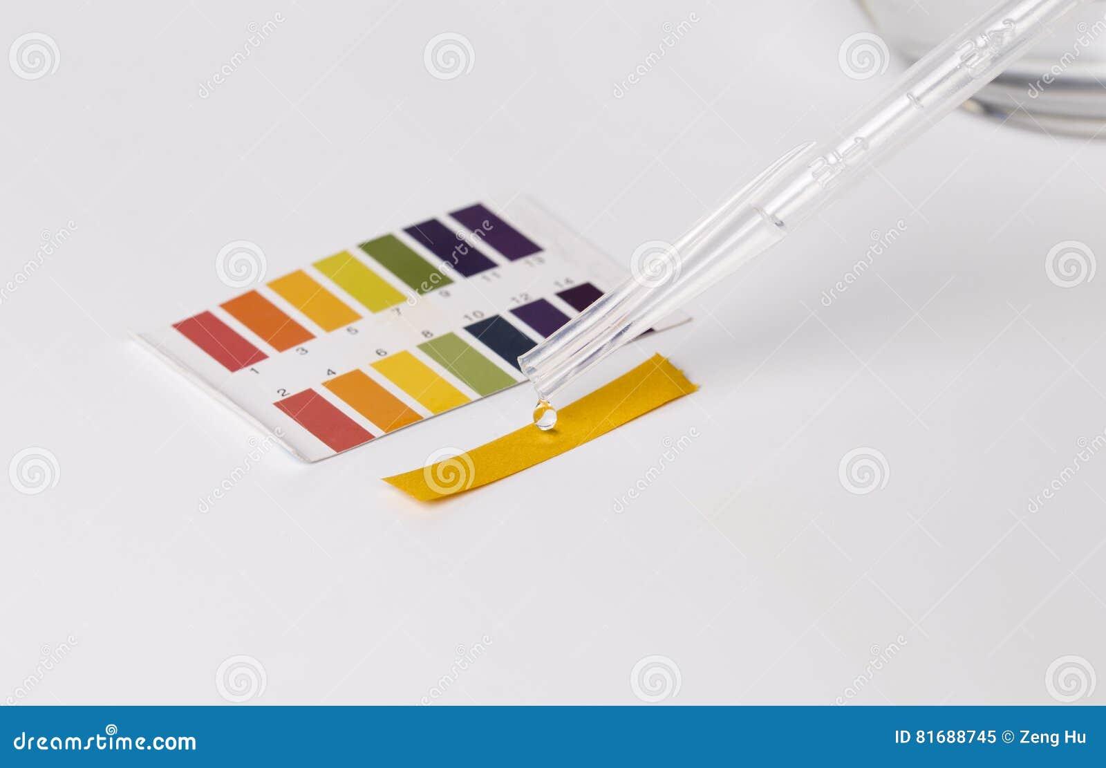 Teste e água do pH do tornassol