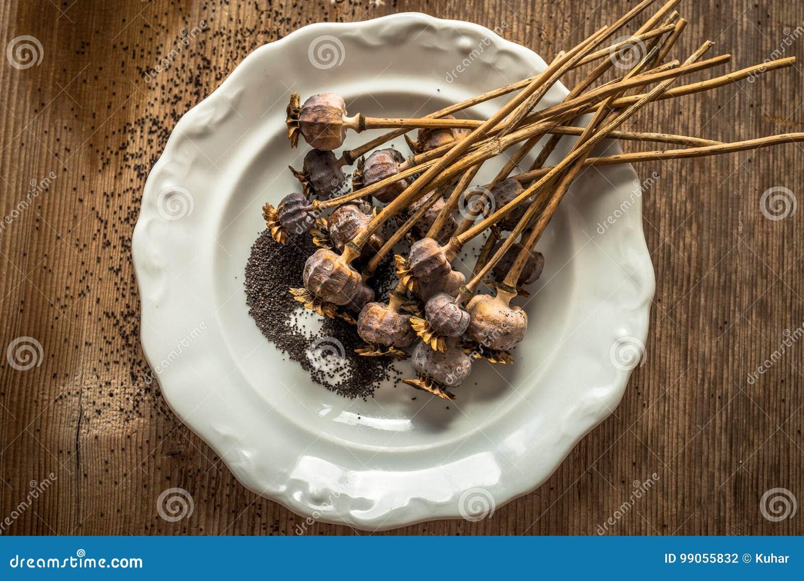 Teste e semi secchi del papavero