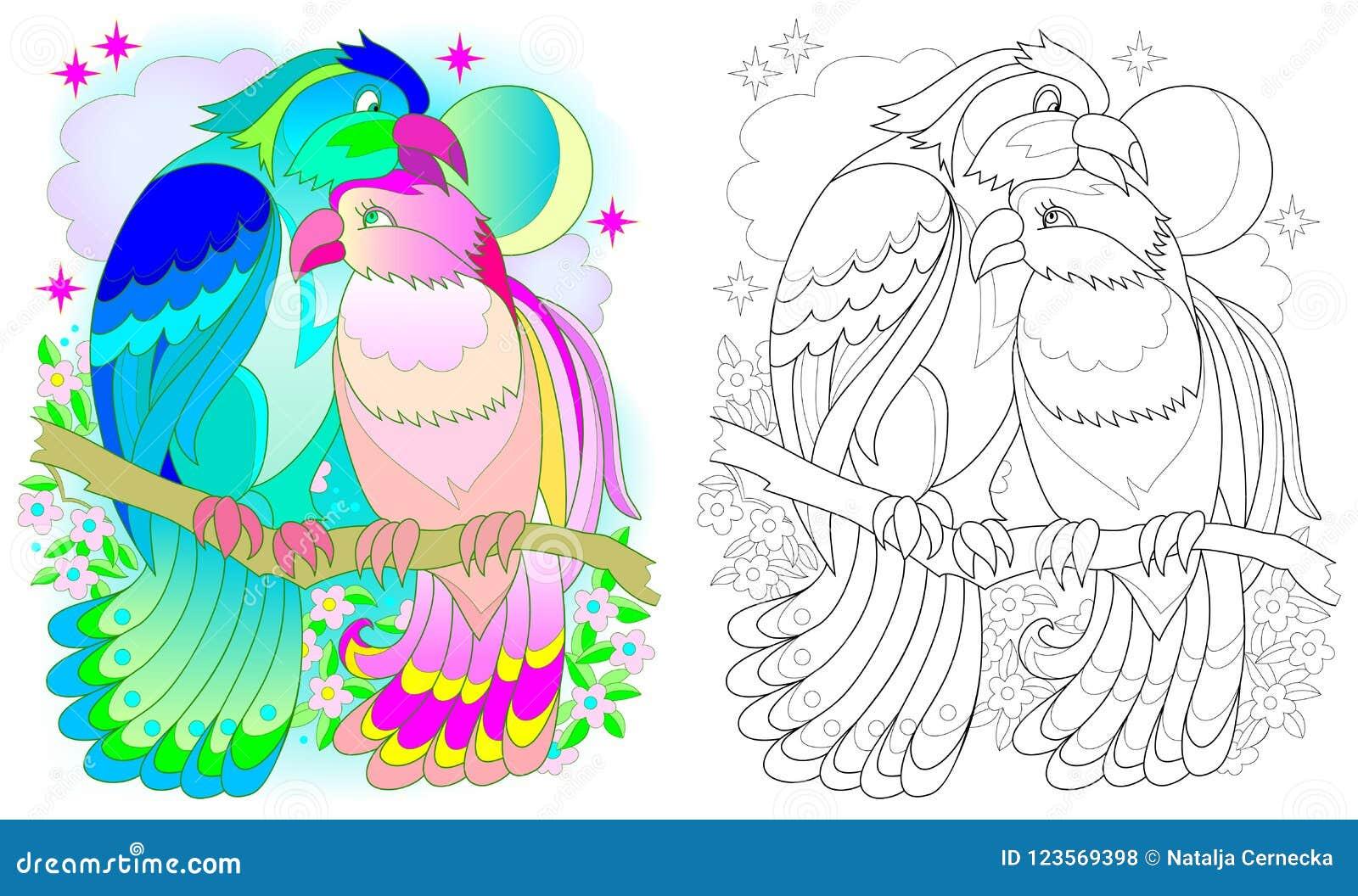Teste Padrao Colorido E Preto E Branco Para Colorir Desenho Da