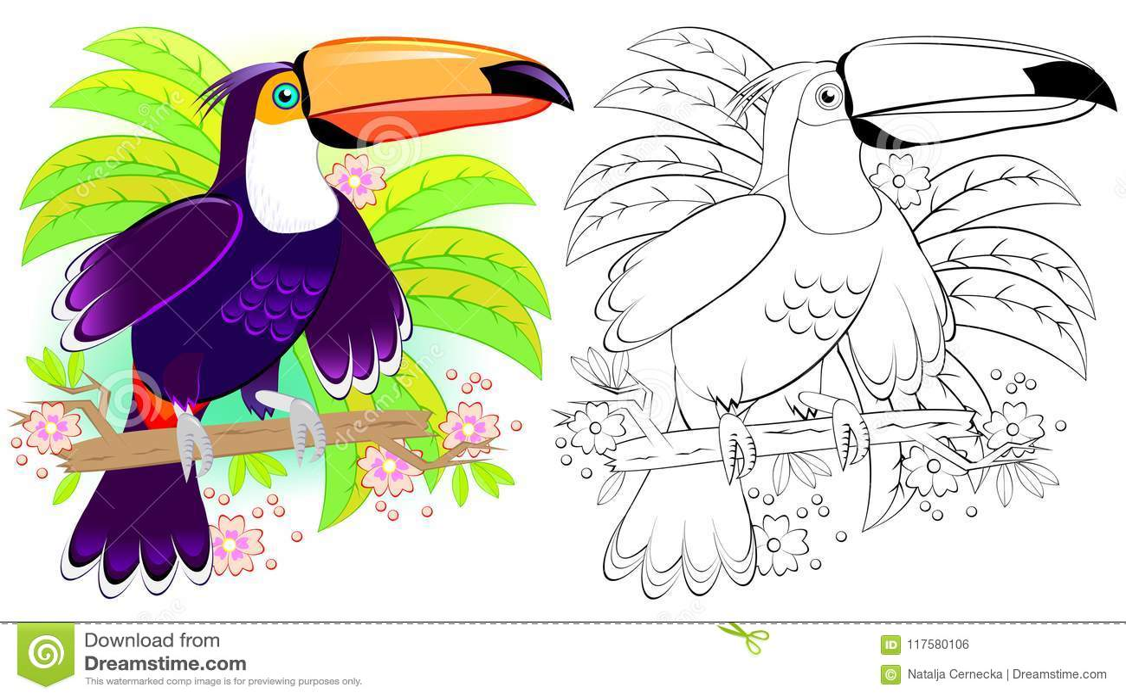 Teste Padrao Colorido E Preto E Branco Para Colorir Ilustracao Do