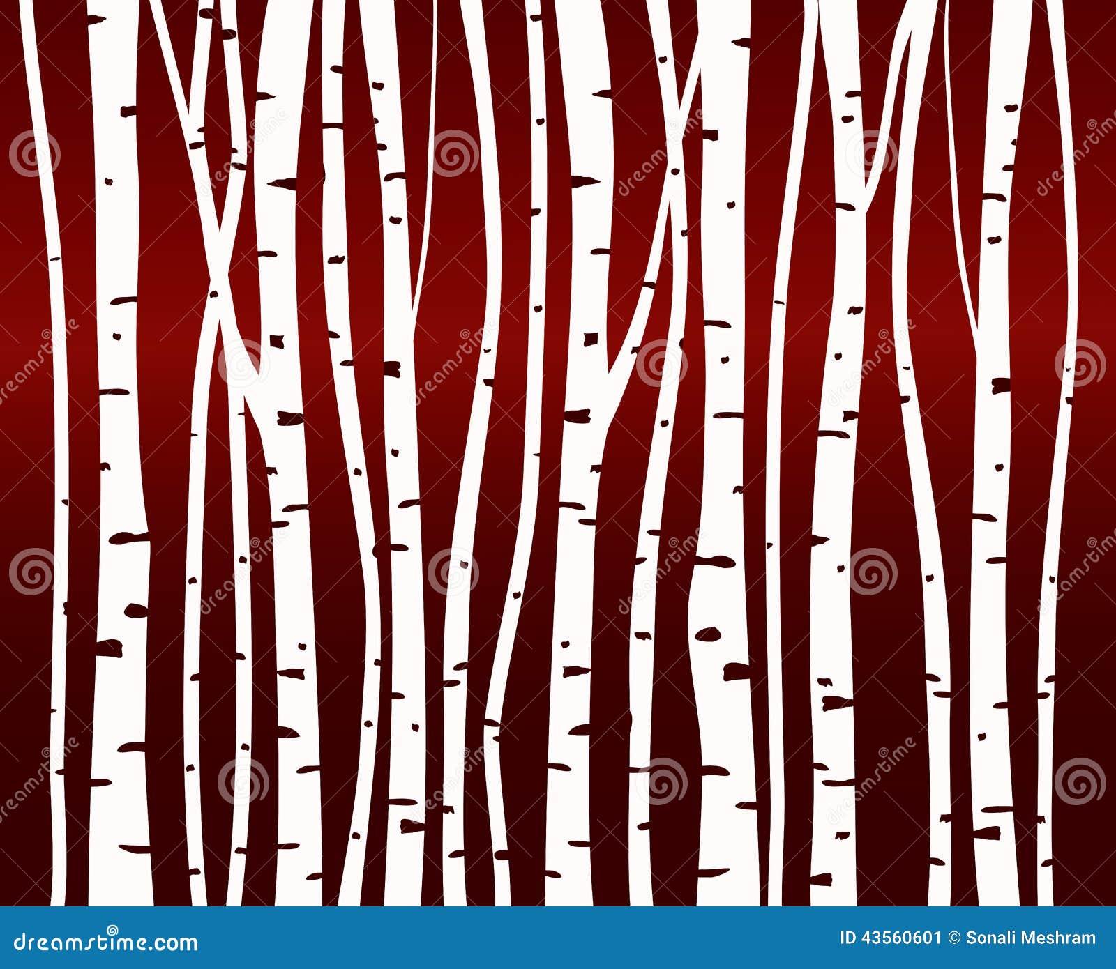 Teste padrão da floresta da árvore de vidoeiro