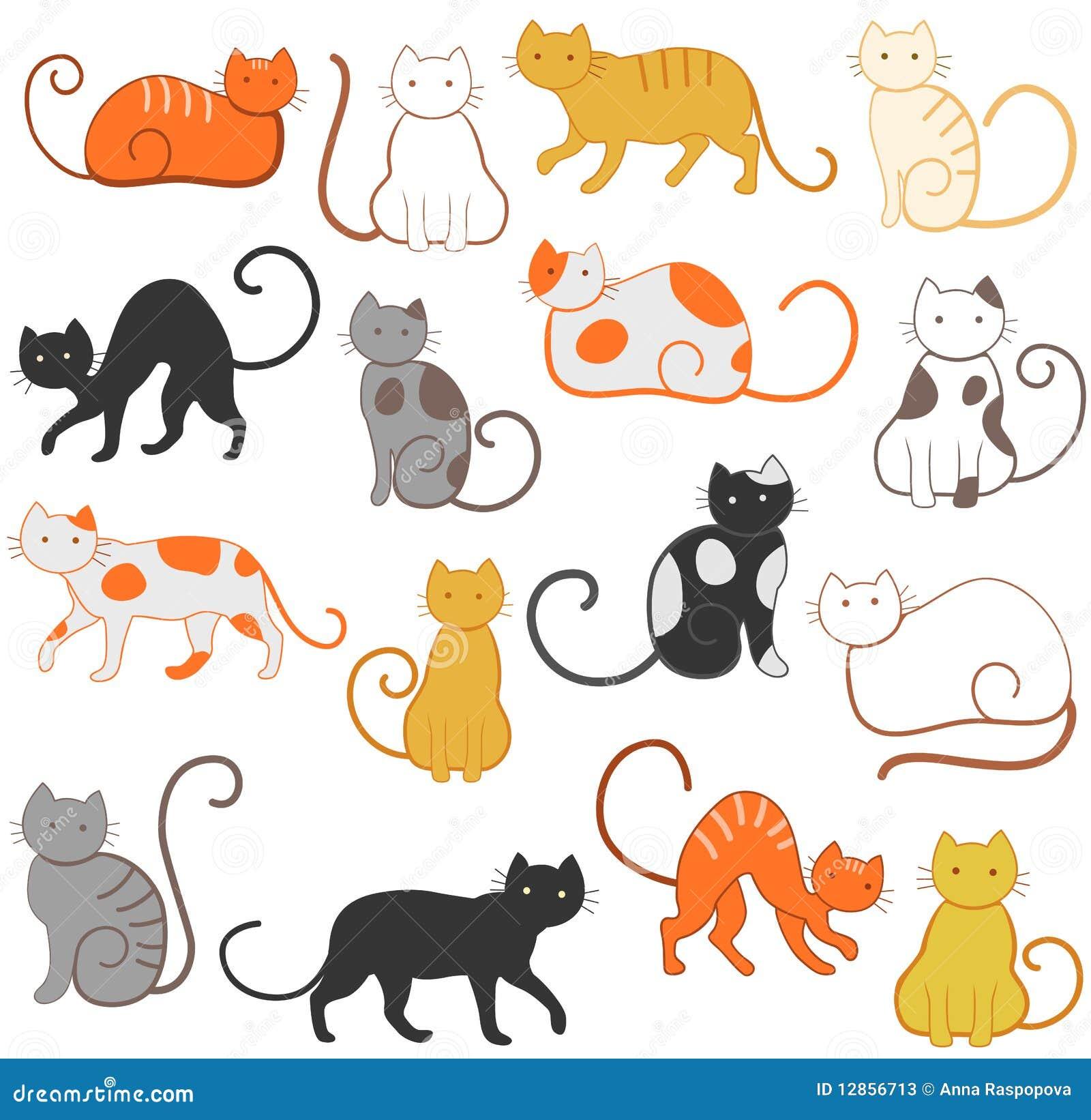 Teste padrão dos gatos